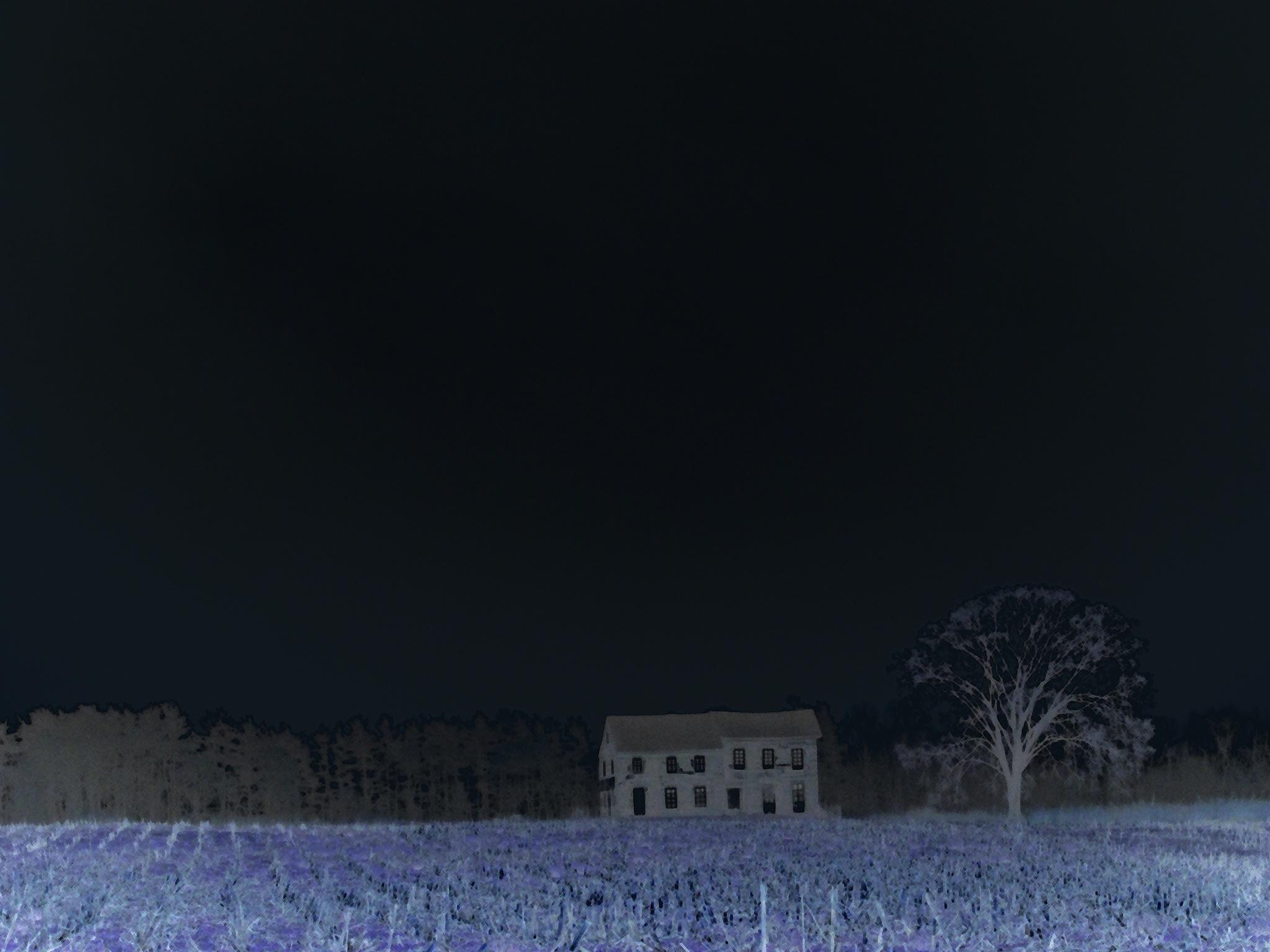 Blue nite  by Mario Muyet