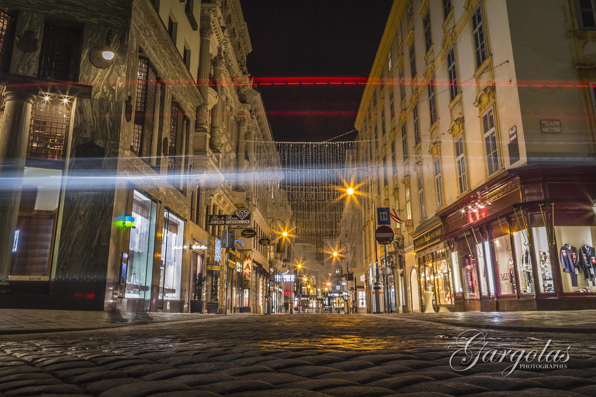 A Night in Vienna by Gargolas Photographes