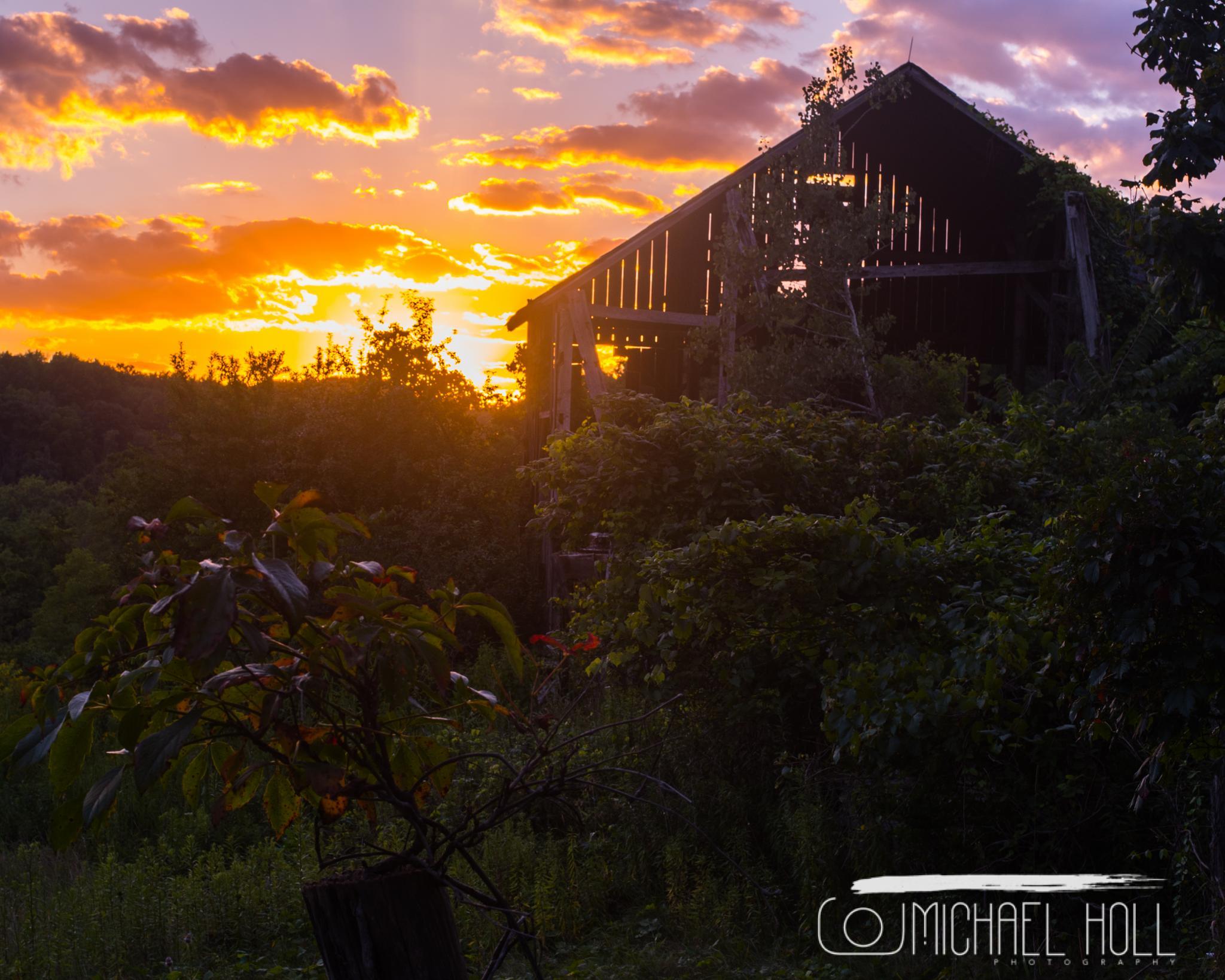 Farm Sunset by Michael Holl