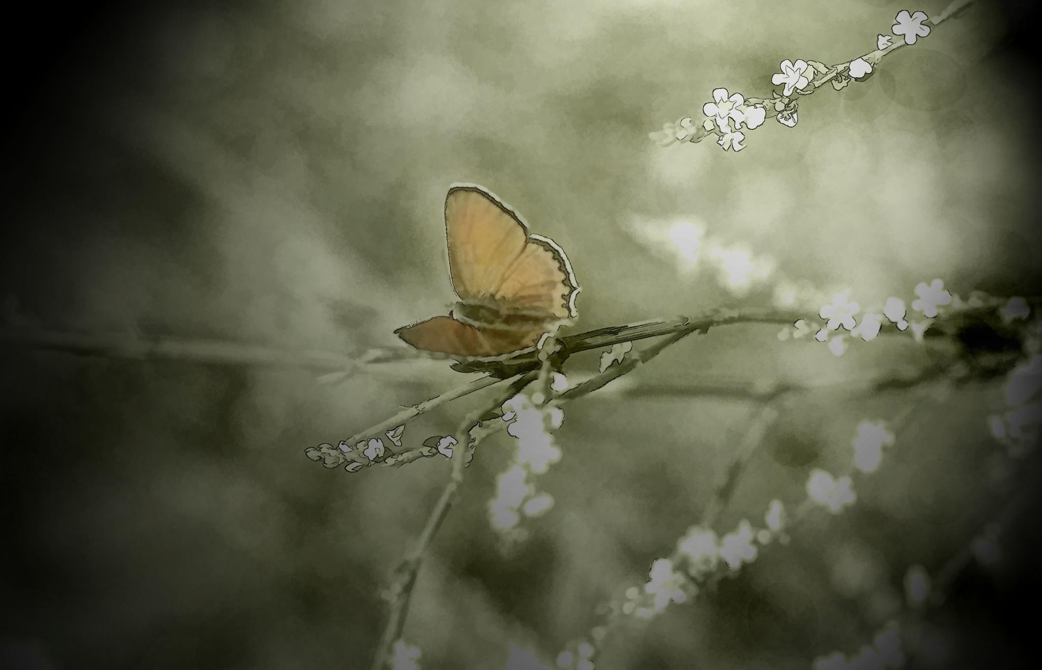 Wild Flower by ElcinYoldascan