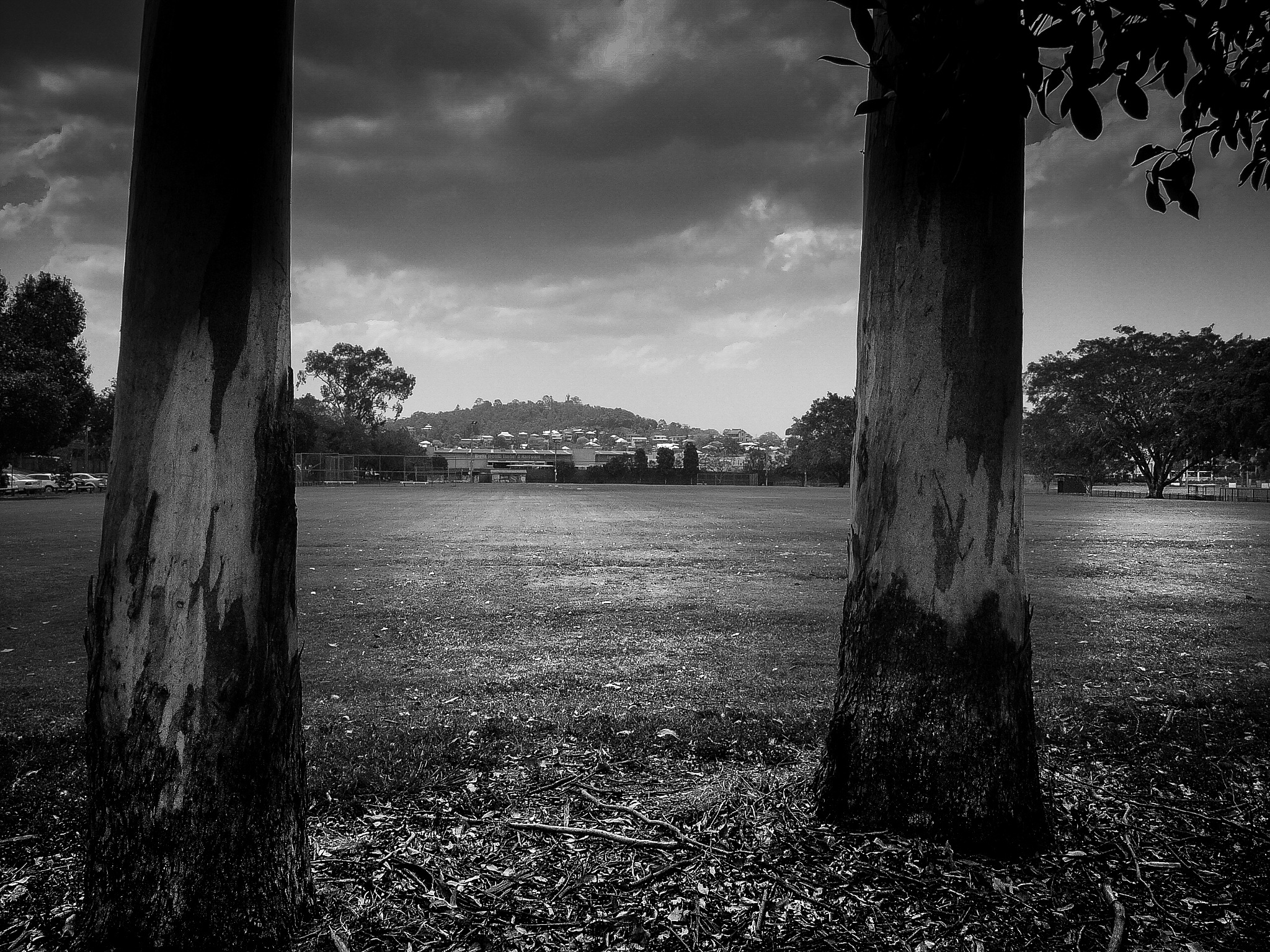 outPosts by Max Evans