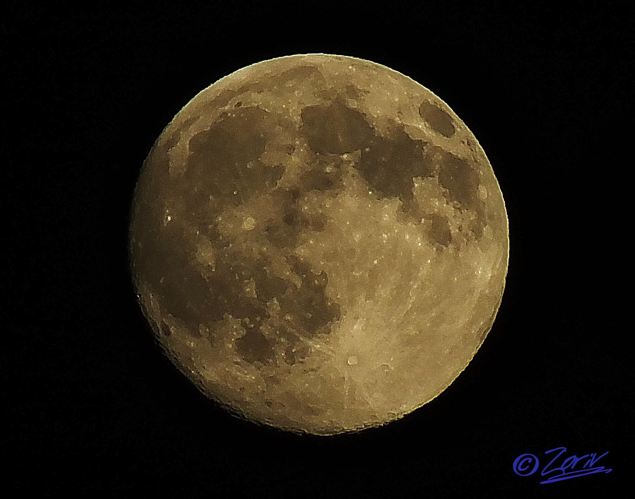 It's a Full Moon tonight by zoriv