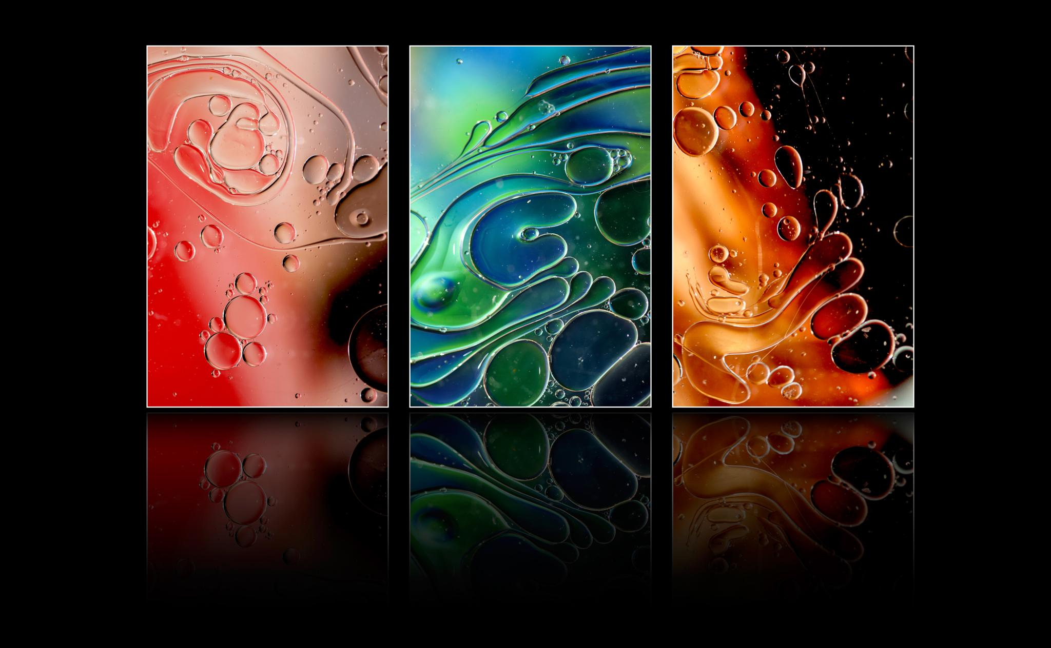 Panel Reflections by Willpower