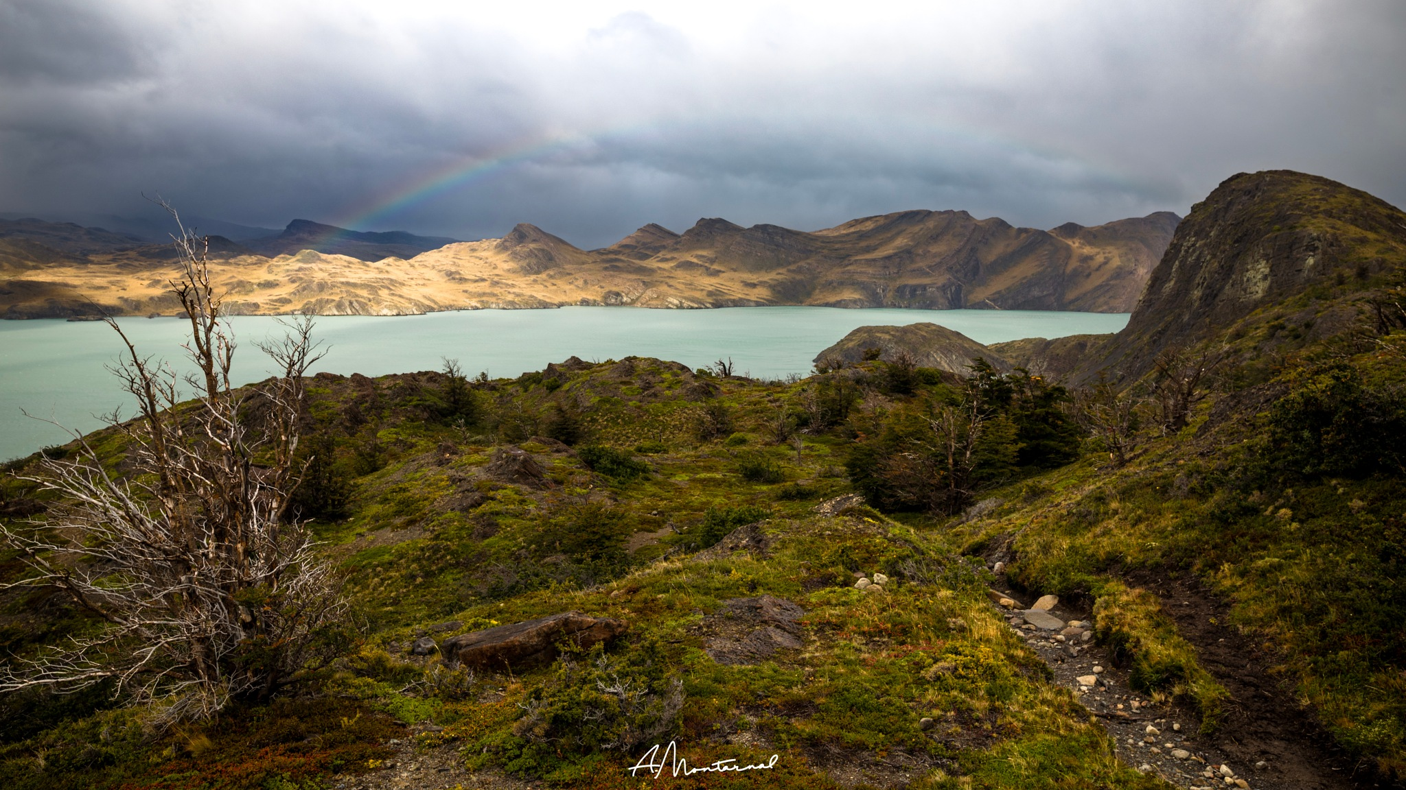 Torres del Paine by A. Montarnal
