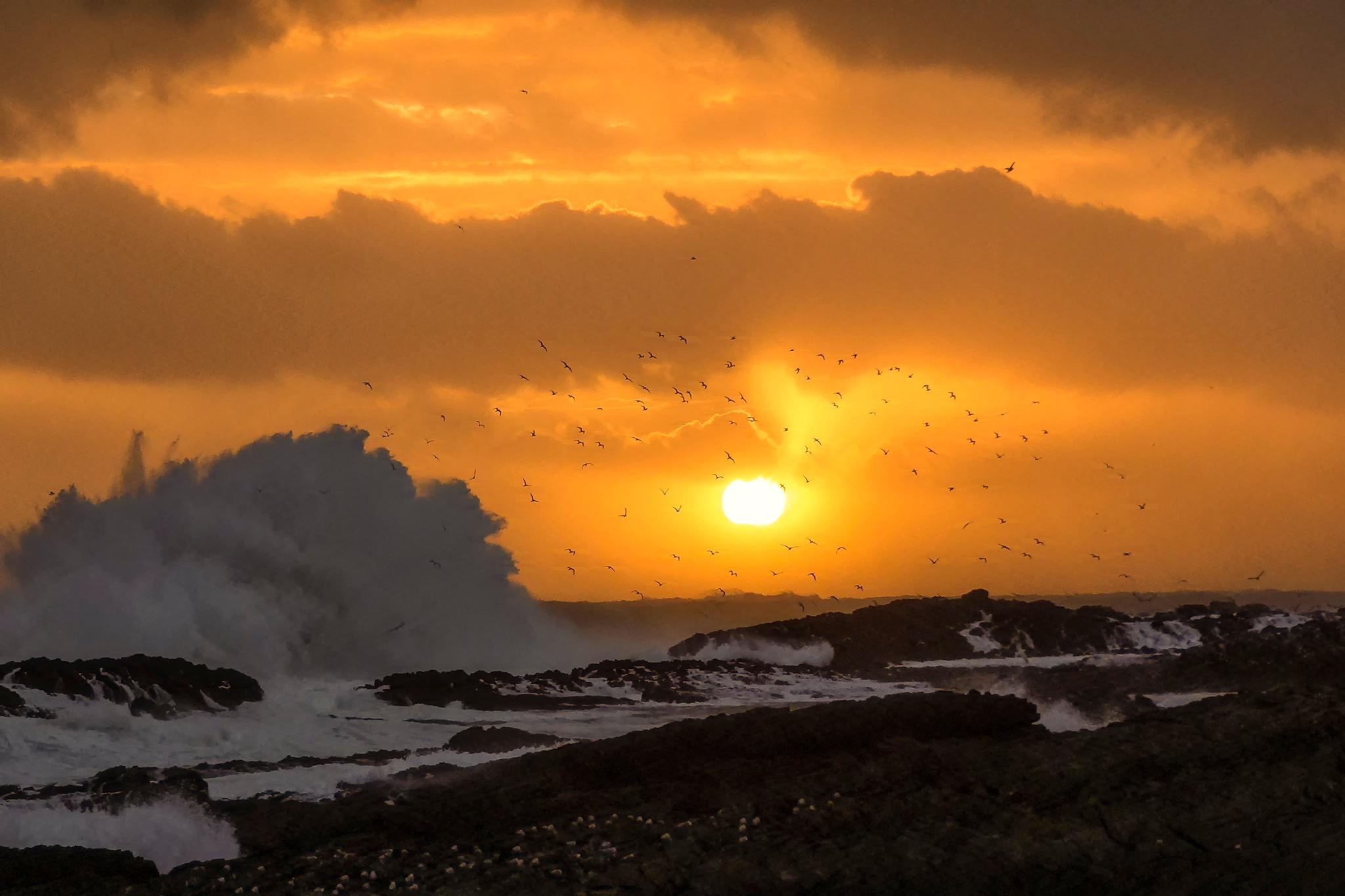 Tsitsikamma sunset by Markus Scholz