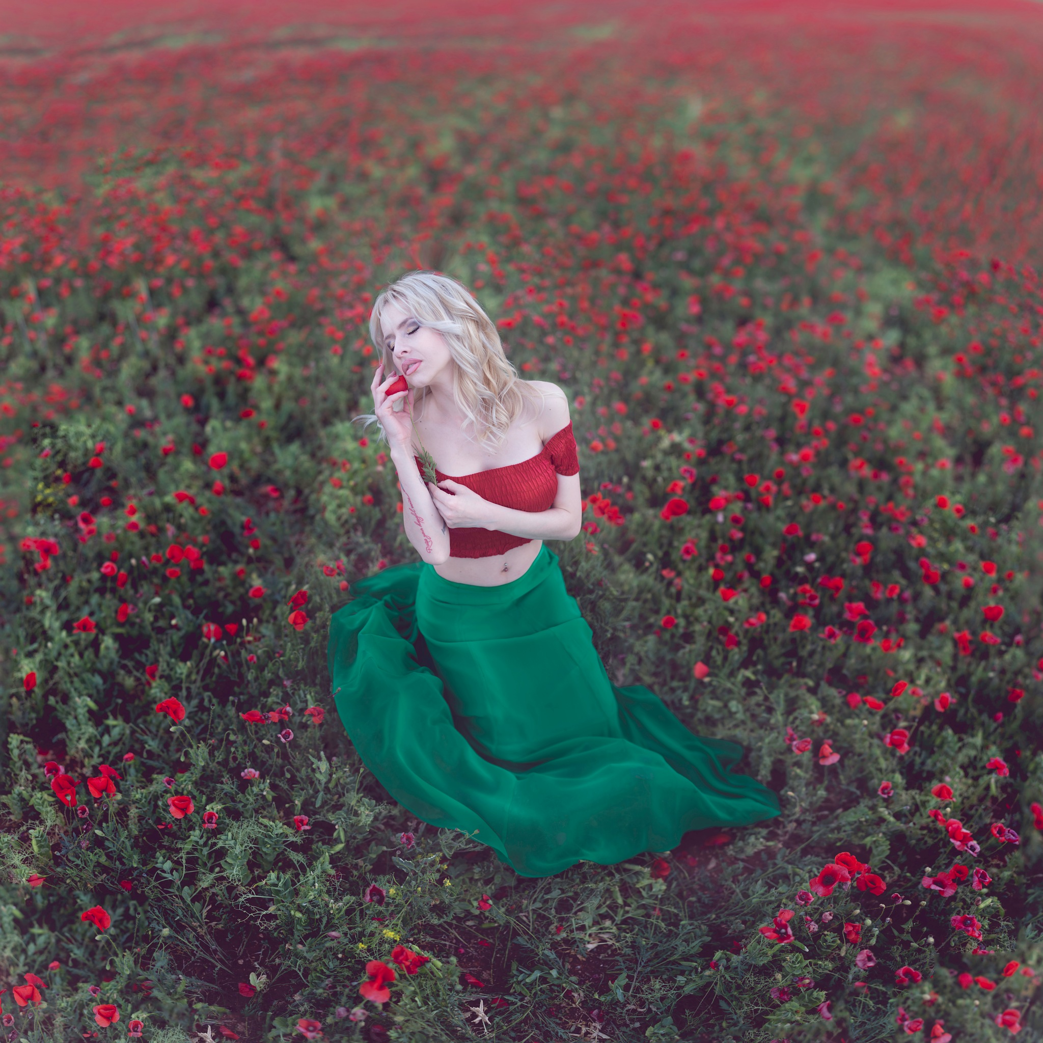 The little poppy by  Jesus Solana  Poegraphy