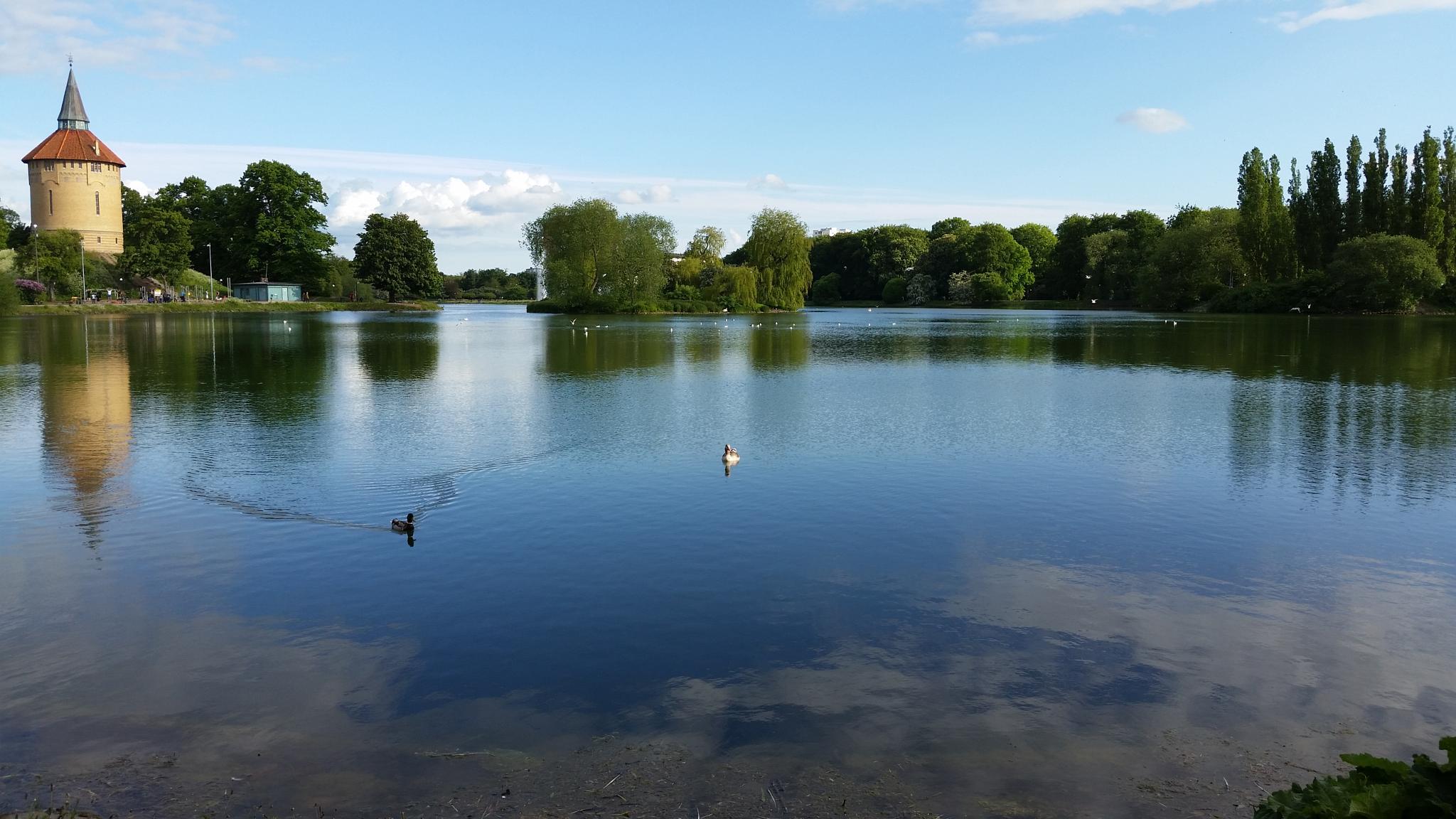 Peaceful lake by Ashkan Baharlooe