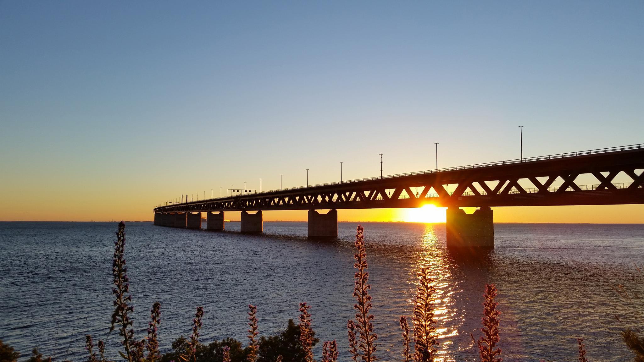 Öresundsbron at sunset by Ashkan Baharlooe
