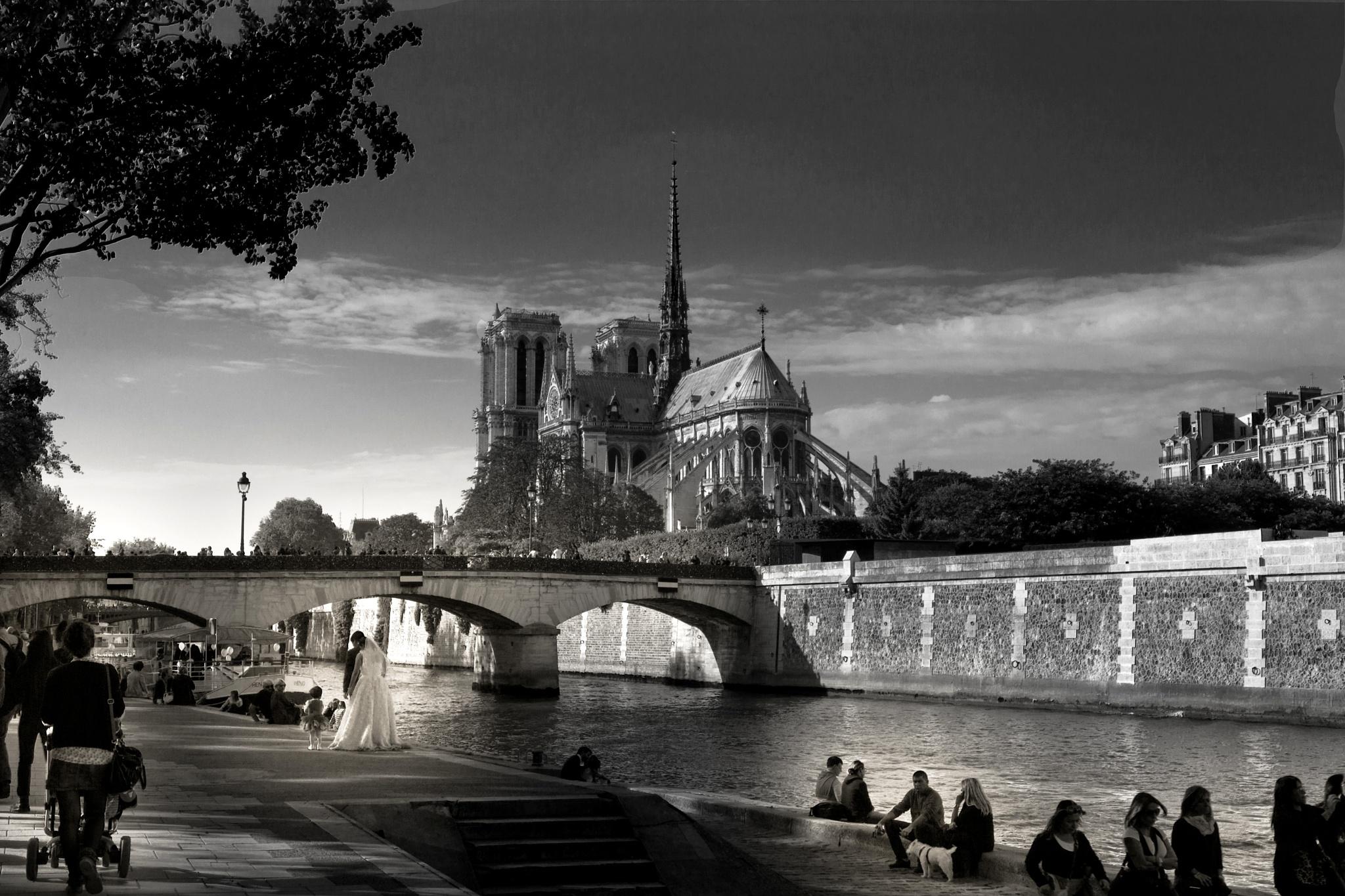Les quais de Seine et Notre Dame de Paris by RuedeSiam