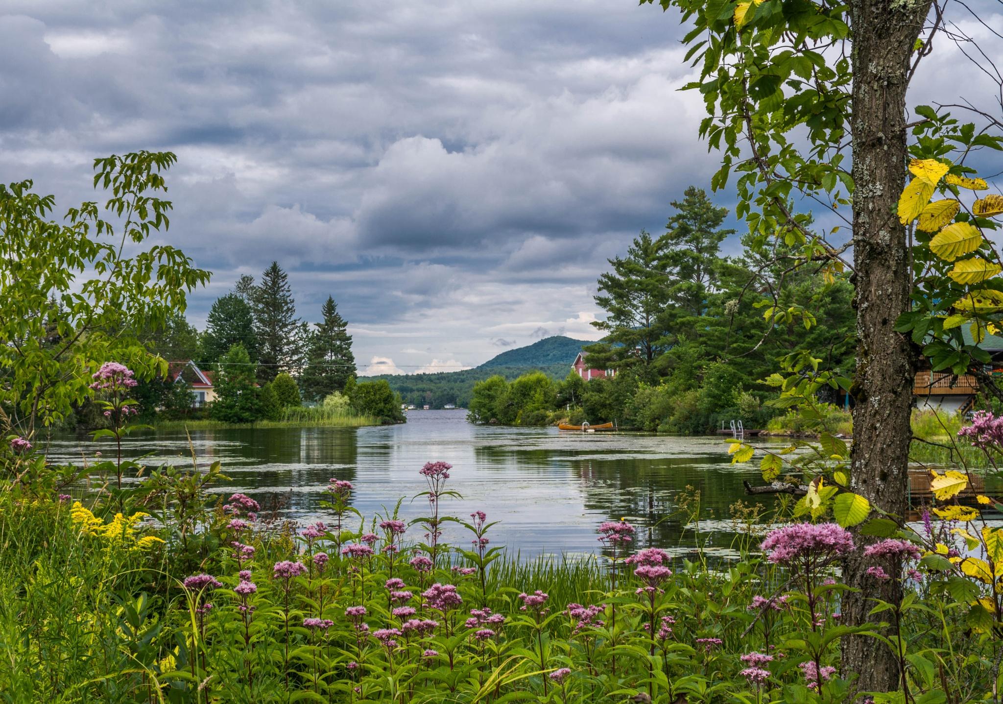 Le lac d'Argent by AteliersClaudeBernard