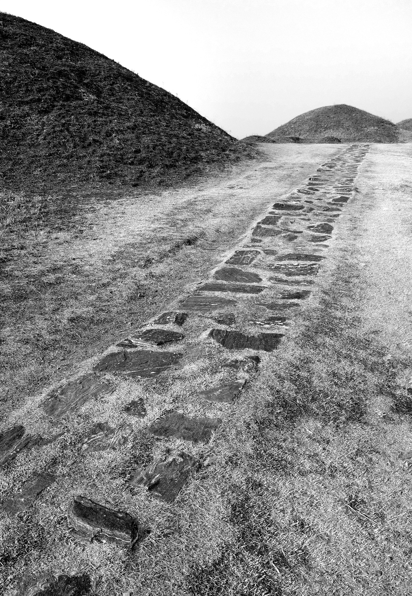 Path among the Tombs by Steve Garrigues