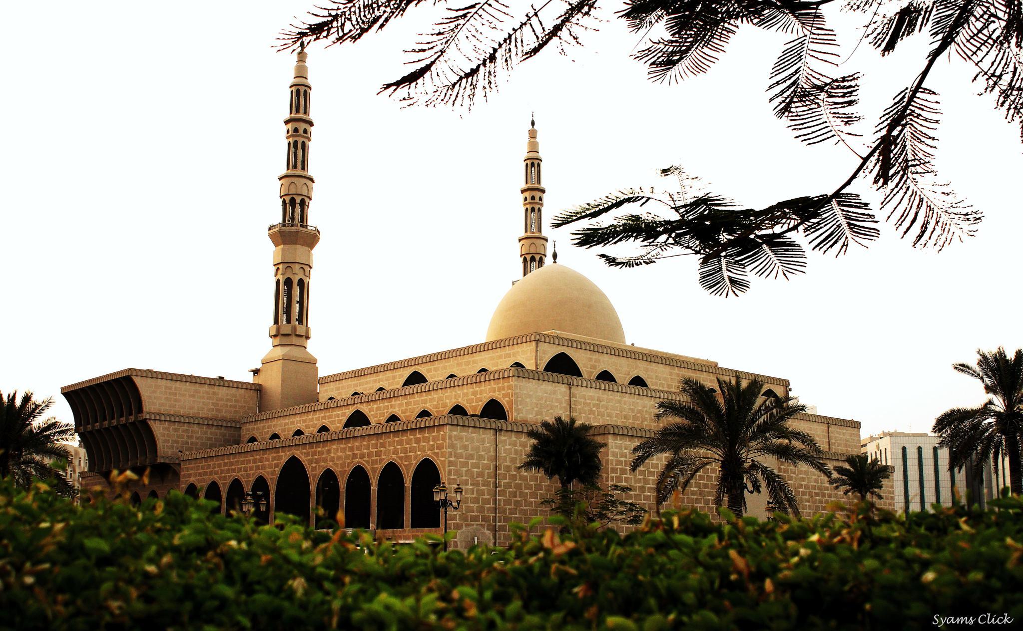 King Faisal Mosque by SyamsclicK