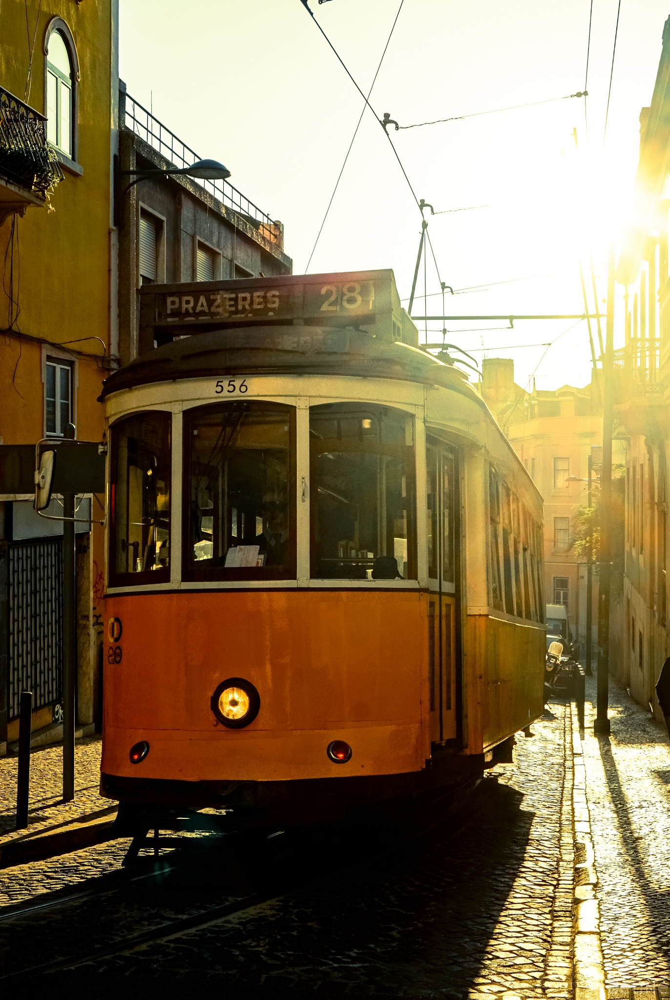 Sunny Tramway by beune