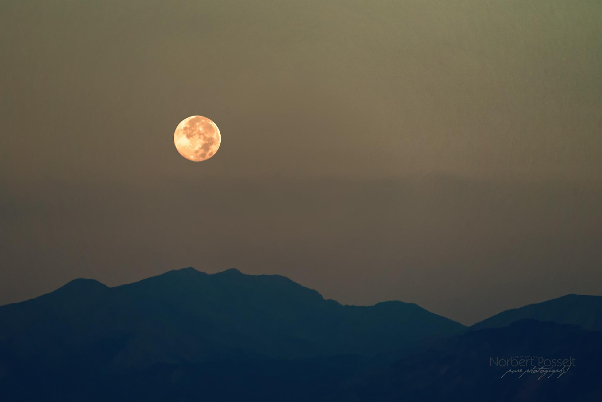 Moonrise by Norbert Posselt