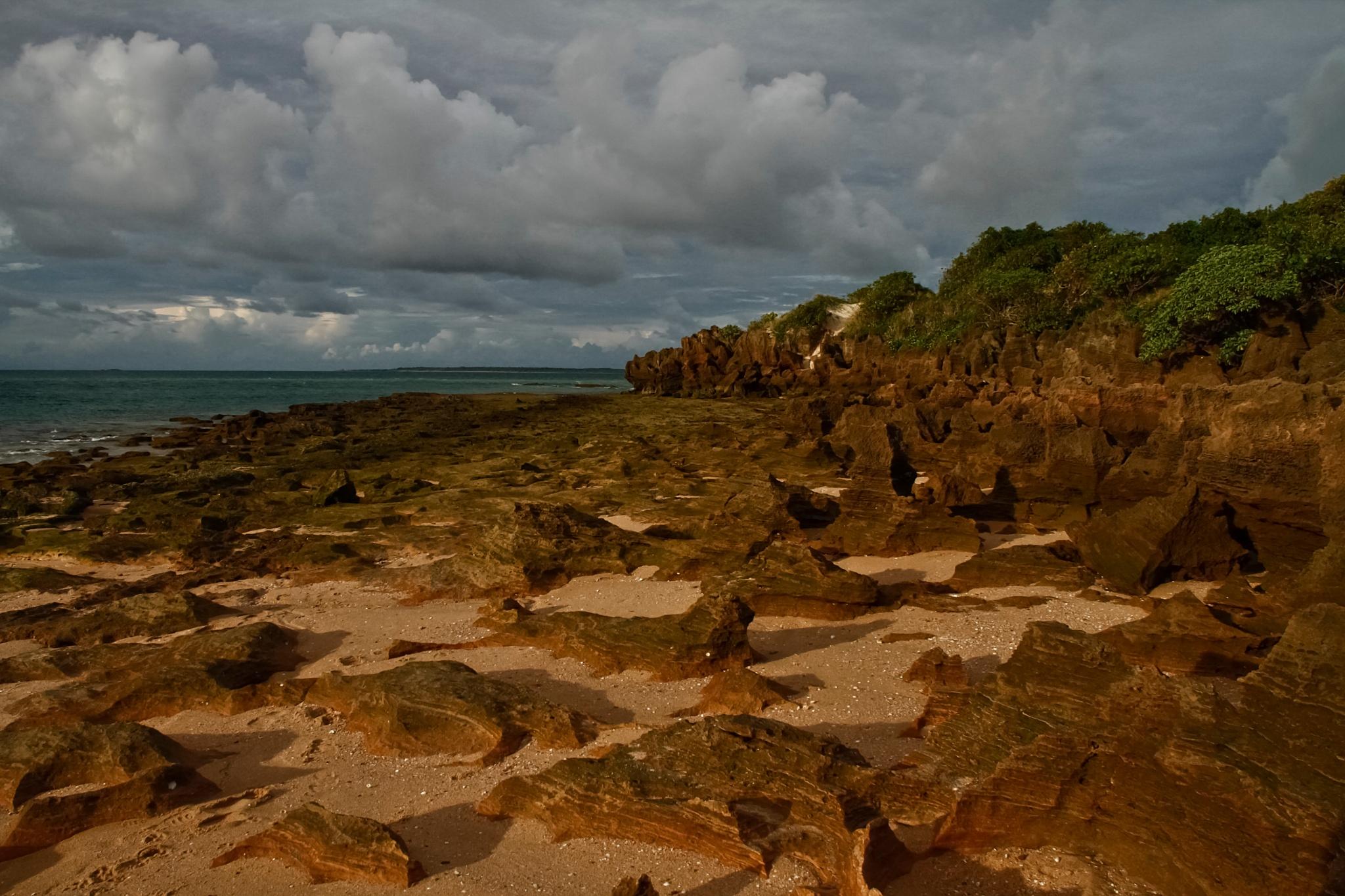LOW TIDE AT WIRRAWUY BEACH  by EVA