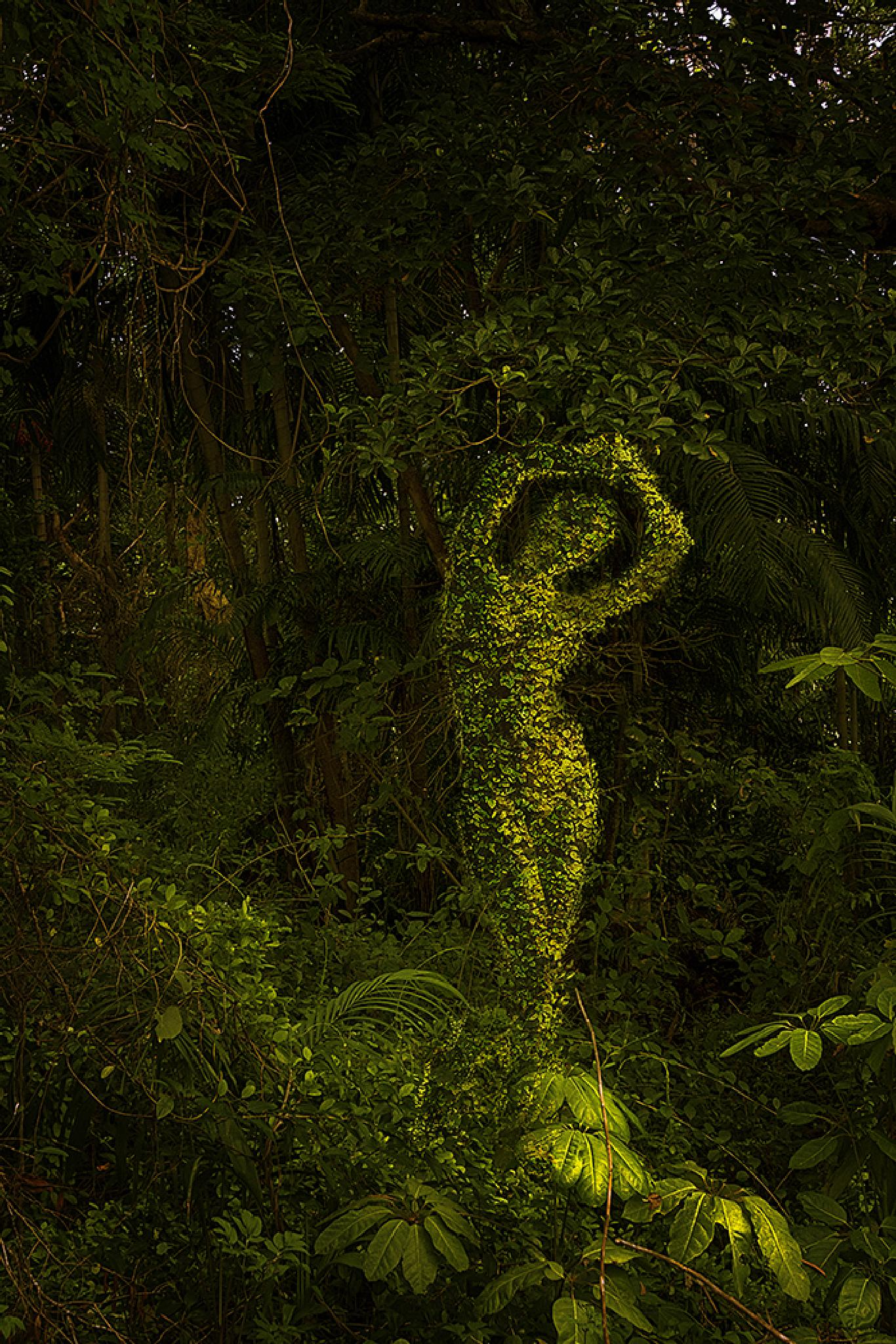 FOREST QUEEN by EVA