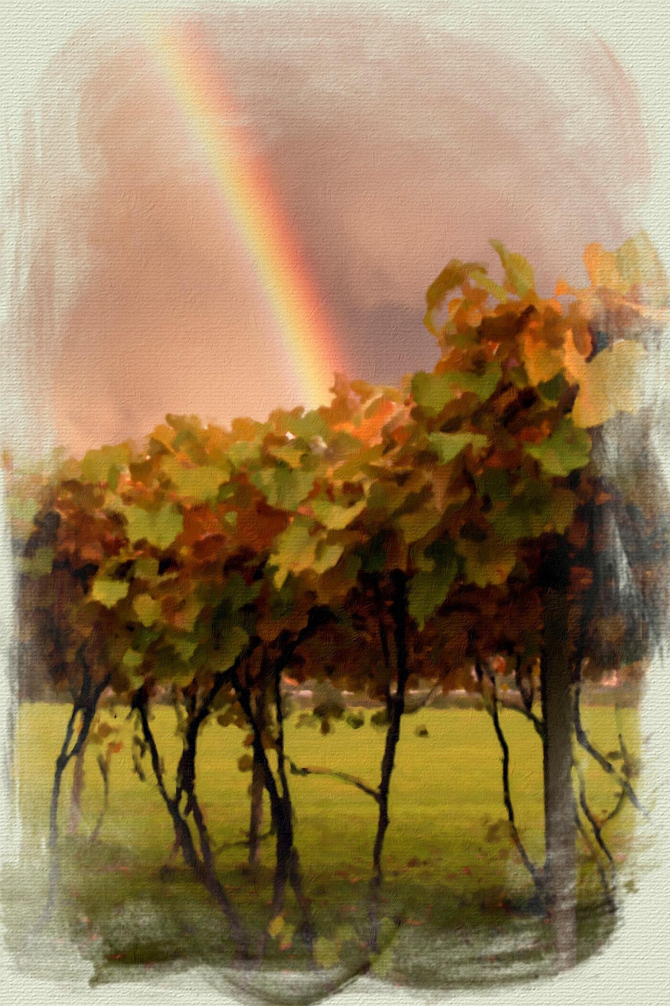 RAINBOW  DREAMS  by EVA