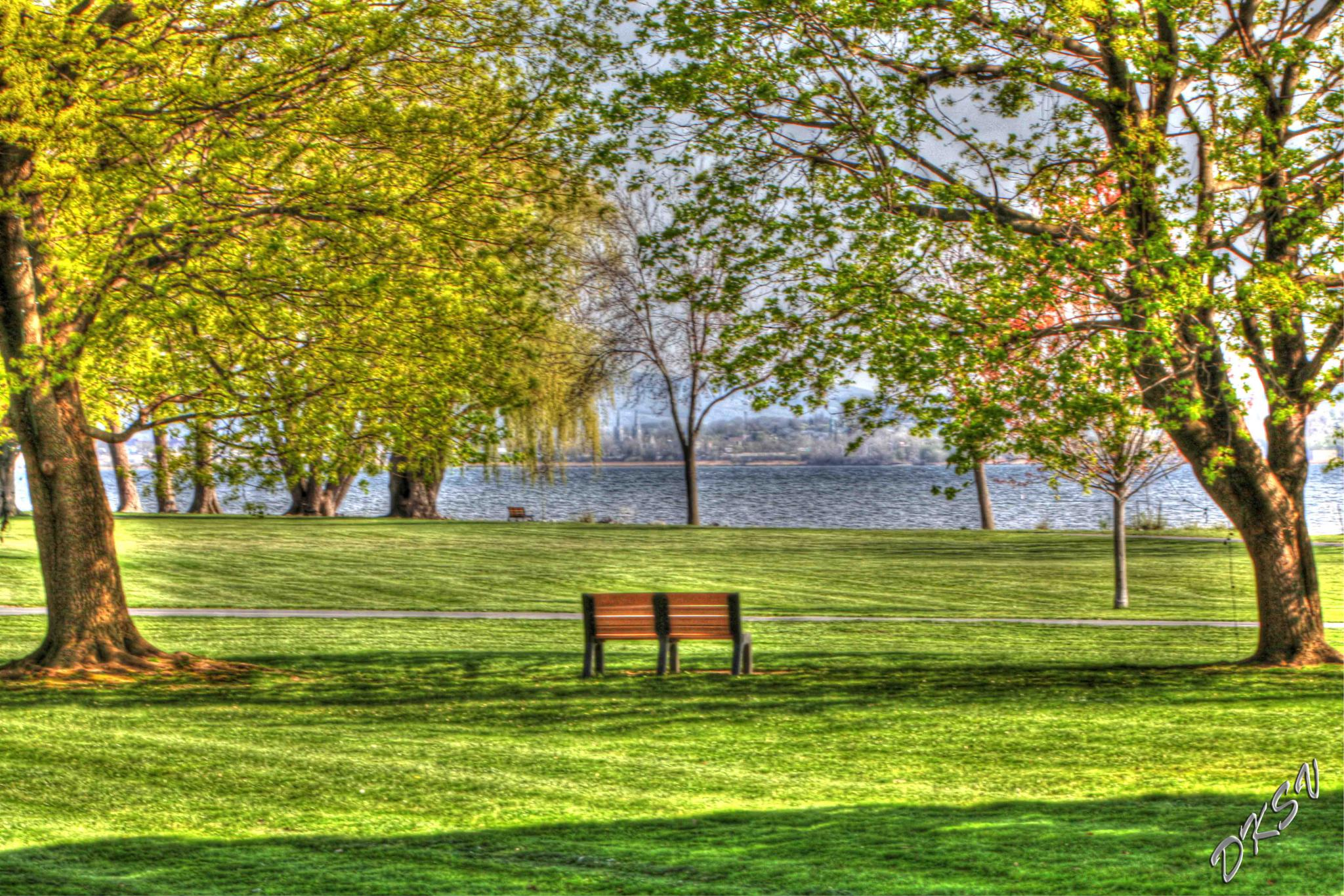 The Bench 2 by William Bulger