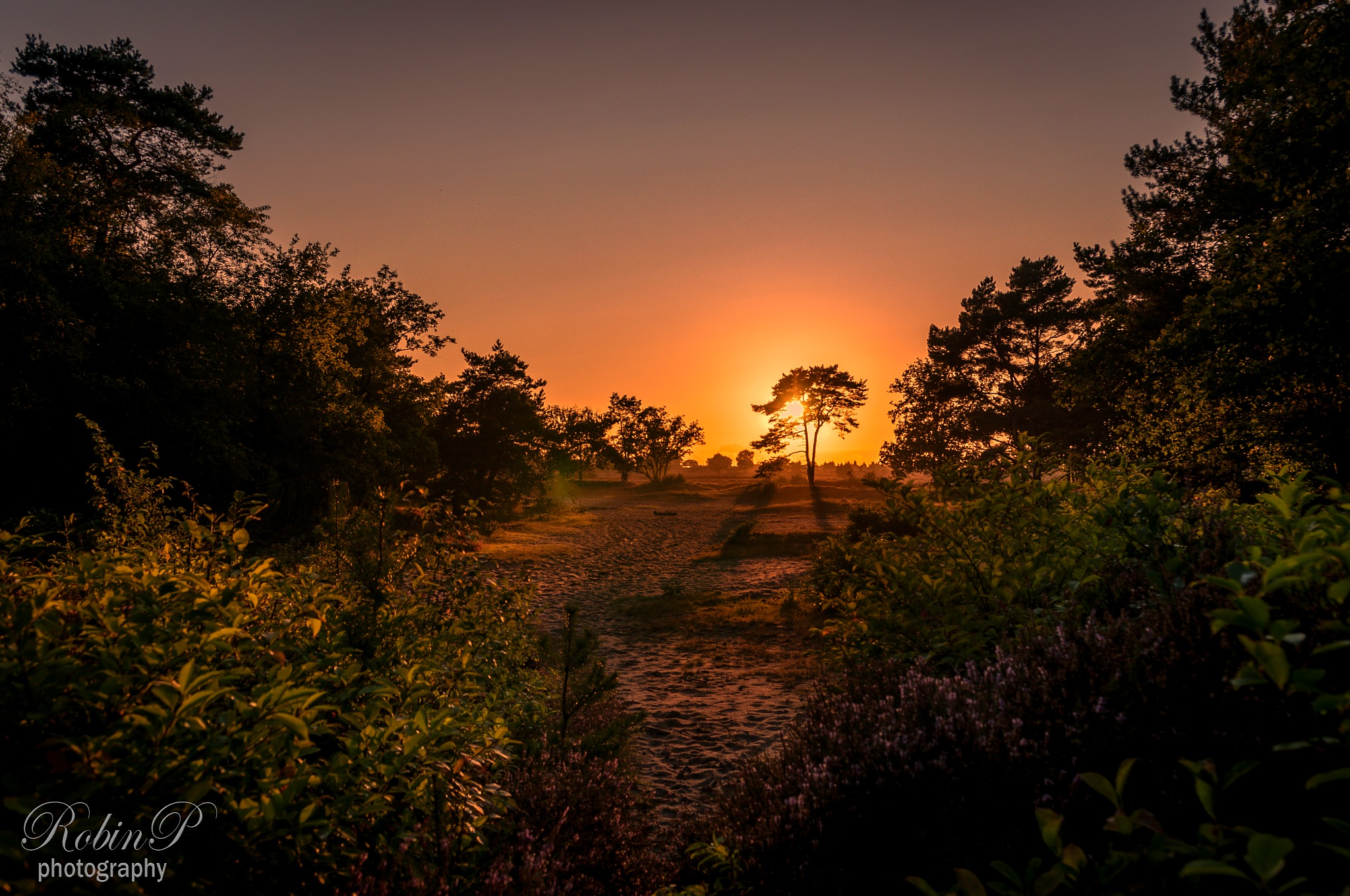 Another sunset by Robin Pulles