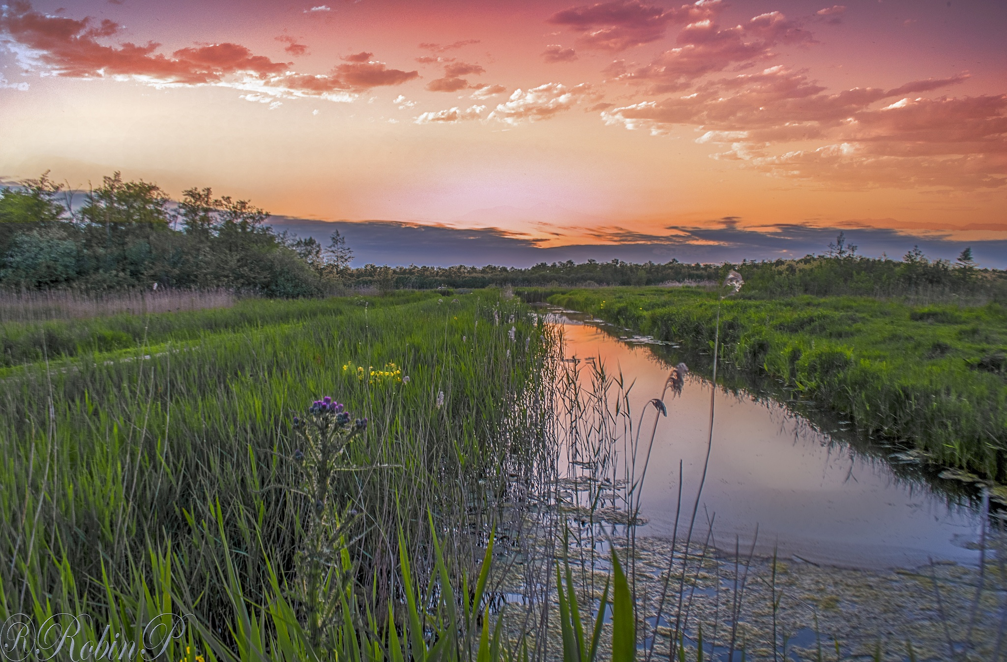 Spring evening by Robin Pulles