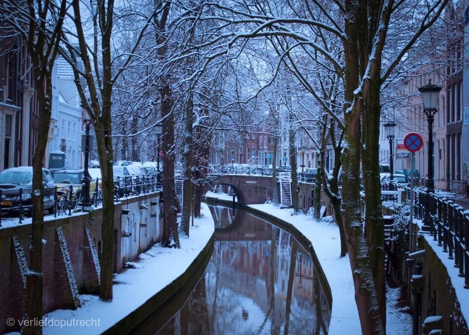A cold morning at the Dutch canals by Robin Pulles