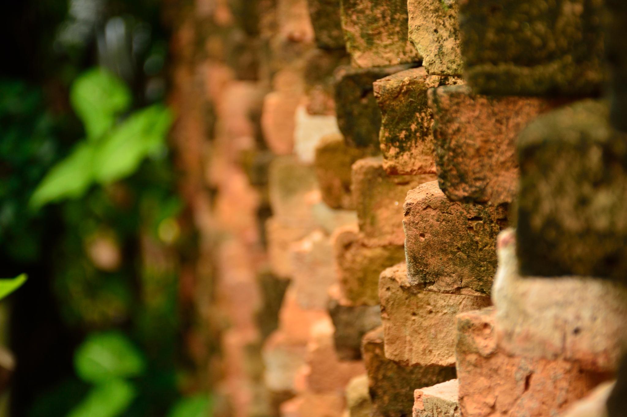 Bricks by Laszlo Ecsedi