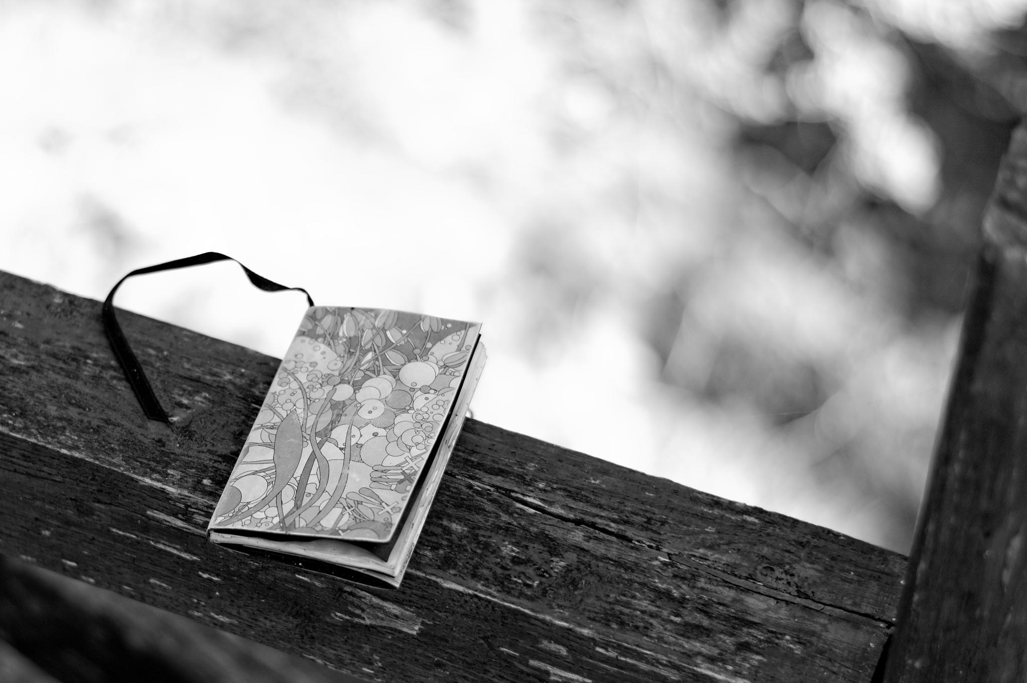 Diary of dreams by Costas Chrisovergis