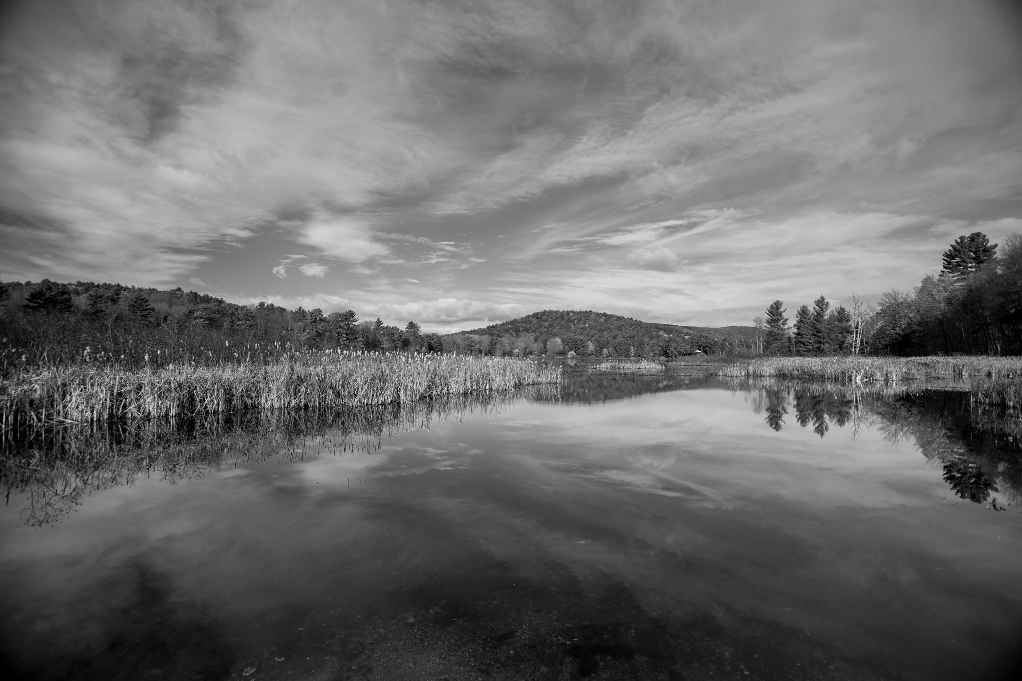 Leverett Pond by Ryan Willey
