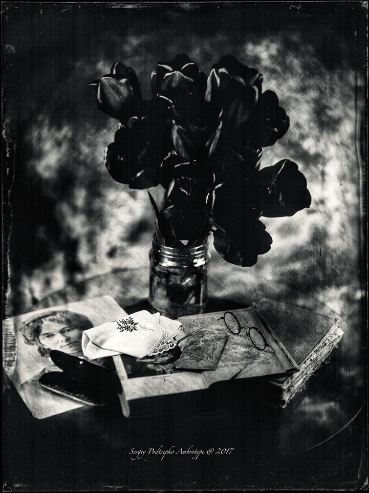 Tulips by Sergey Podtsepko