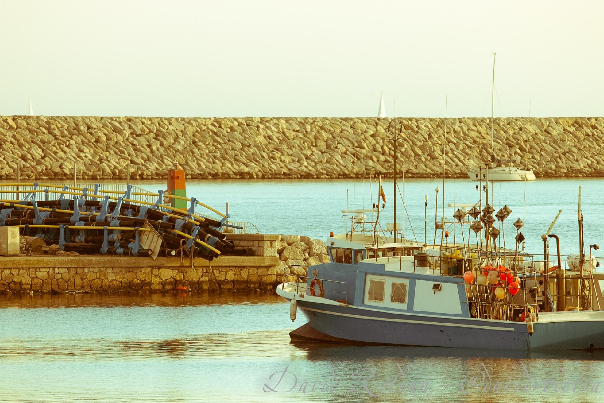 tornant a port by David Roldán