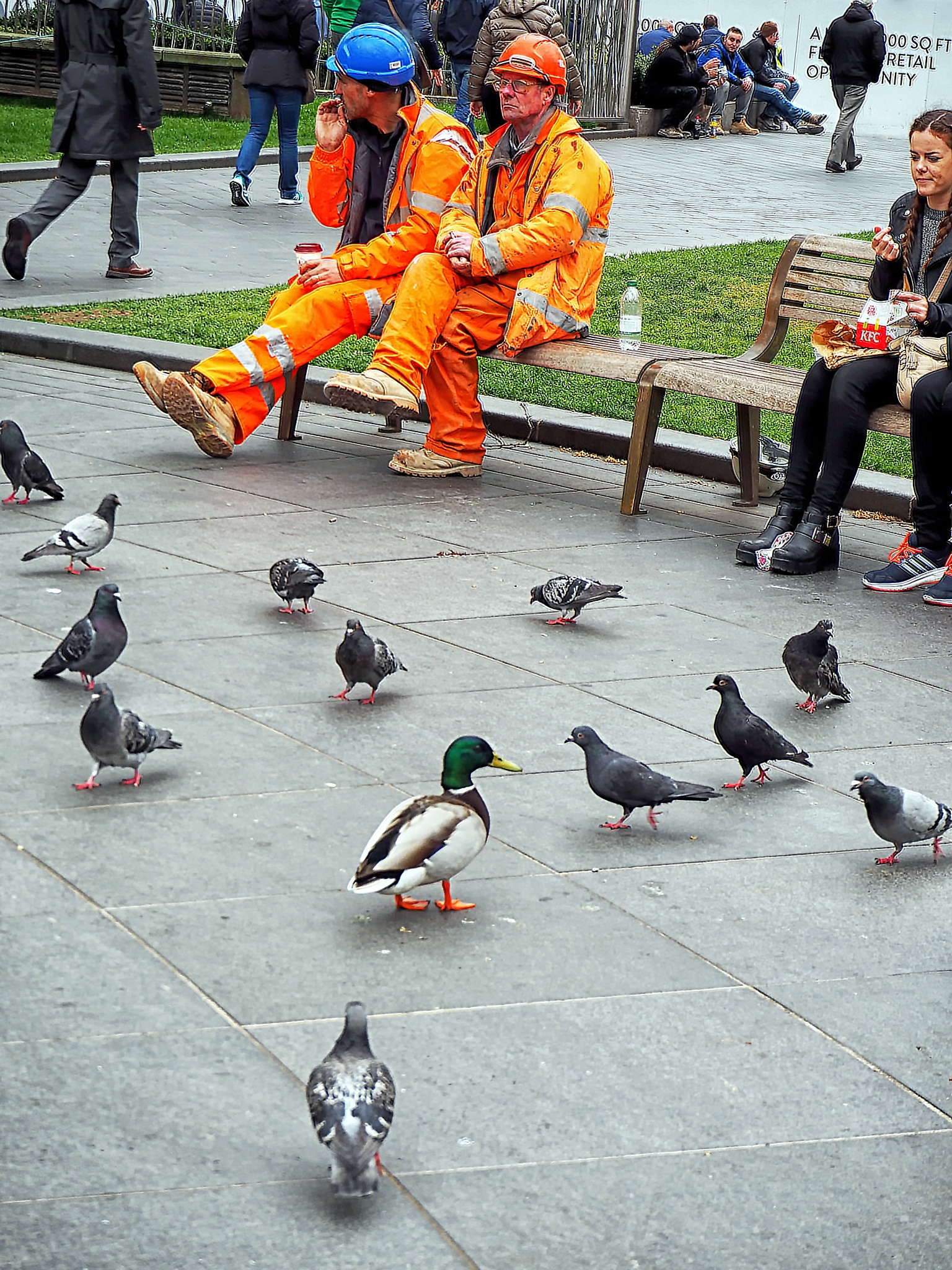 An unusual tourist in Leicester Square by Mike Roberts