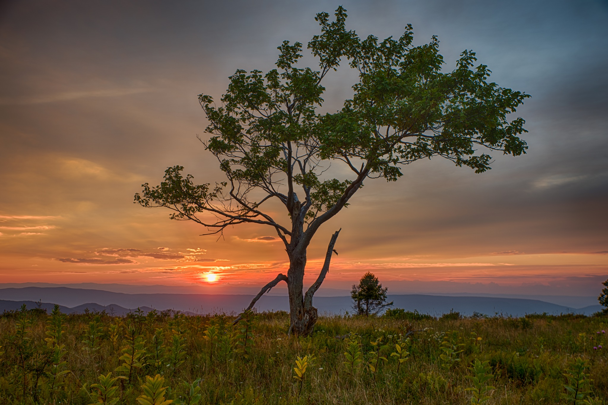Sunset View by CEG Photography