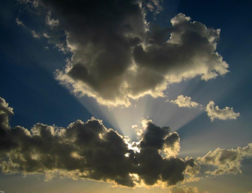 SUN RAYS by Toni S.