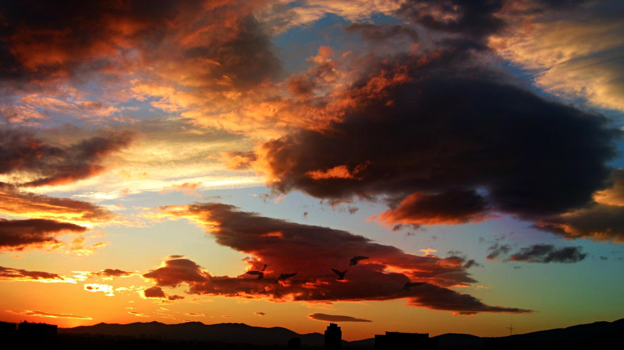Detrás de cada cosa hay algo que aprender. Detrás de cada noche hay un nuevo amanecer. Detrás de cad by Toni S.
