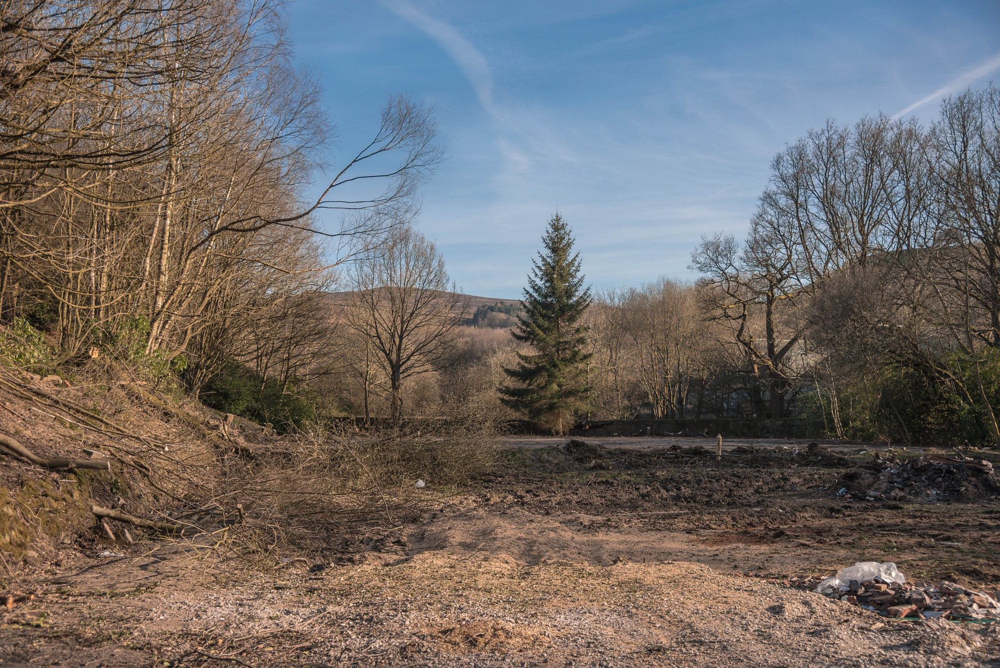 TURNLEE CENTRE 25-03-2017 BOTTOM OF THE GNATHOLE by Andrew Wrigley