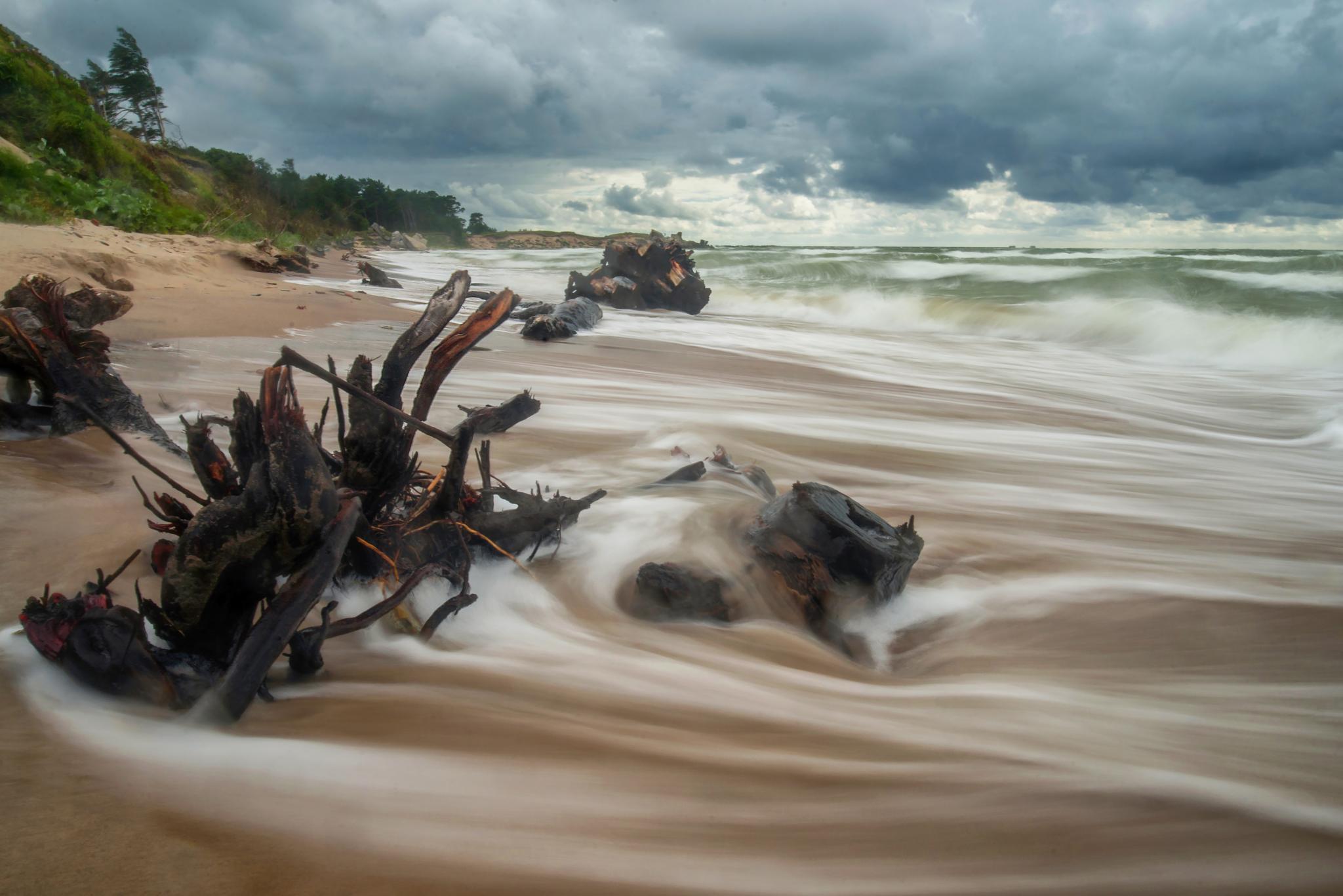 Liepājas windy beach by Olegs Bucis