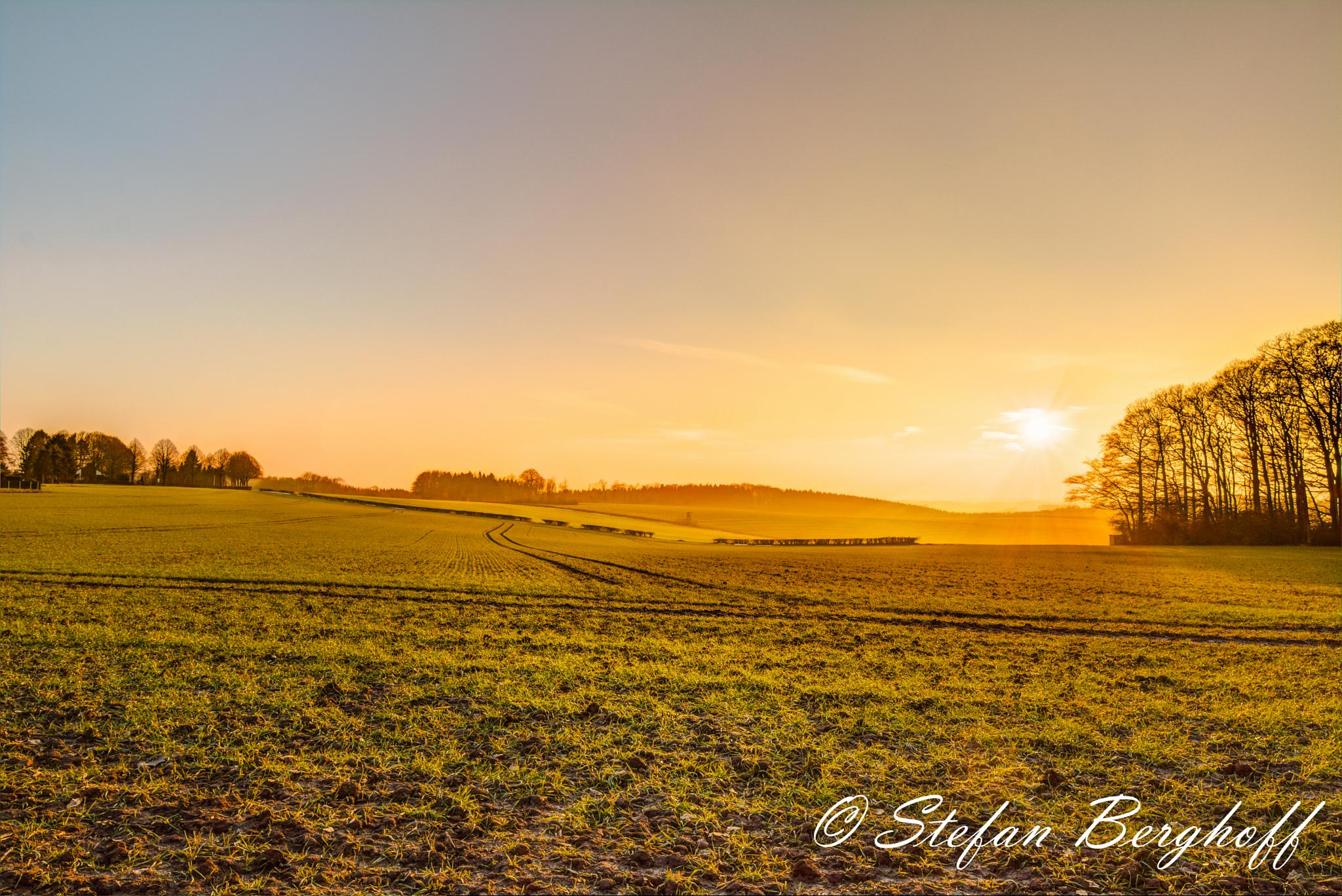 Golden Sunset by Stefan Berghoff