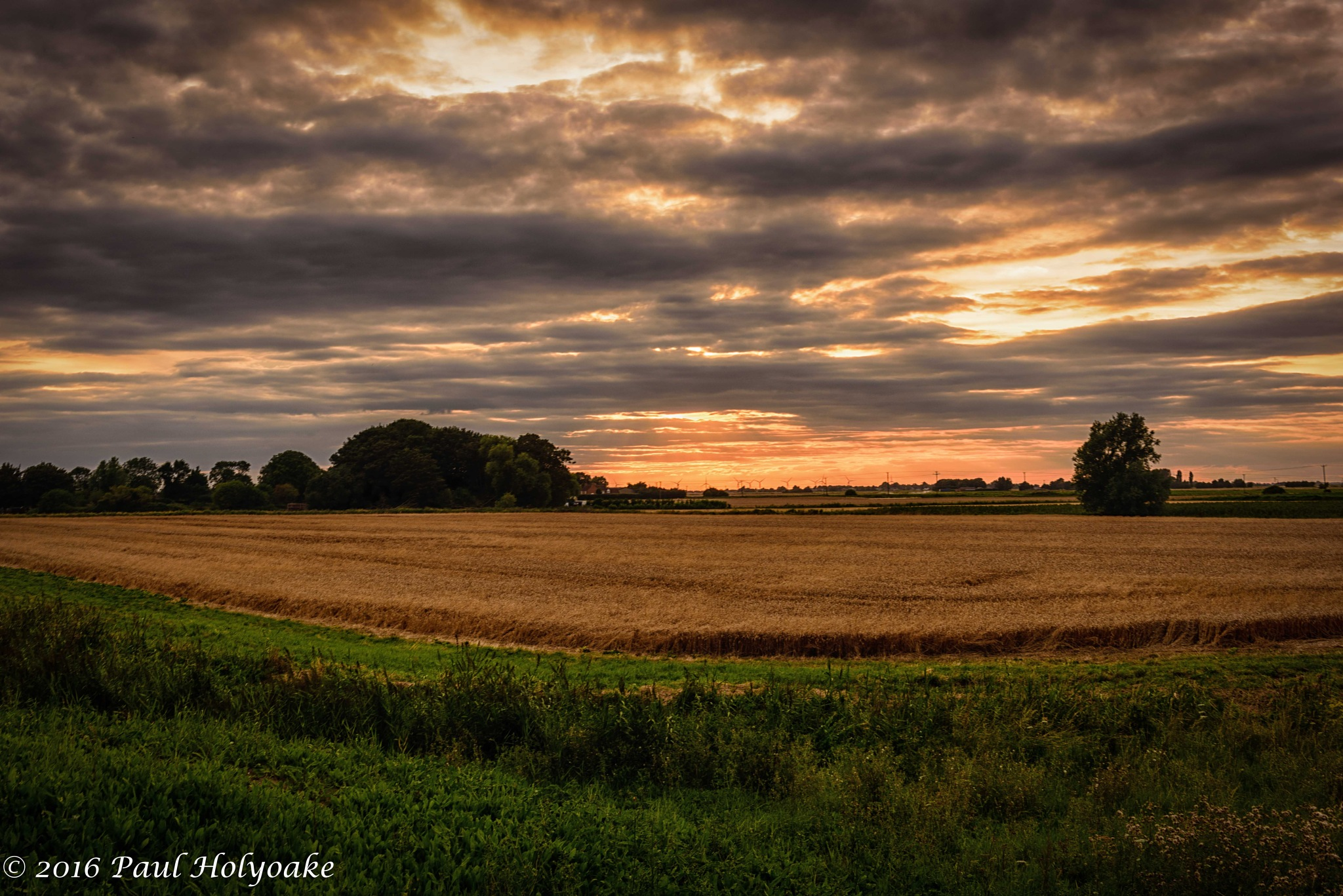 Sunset Field by Photon