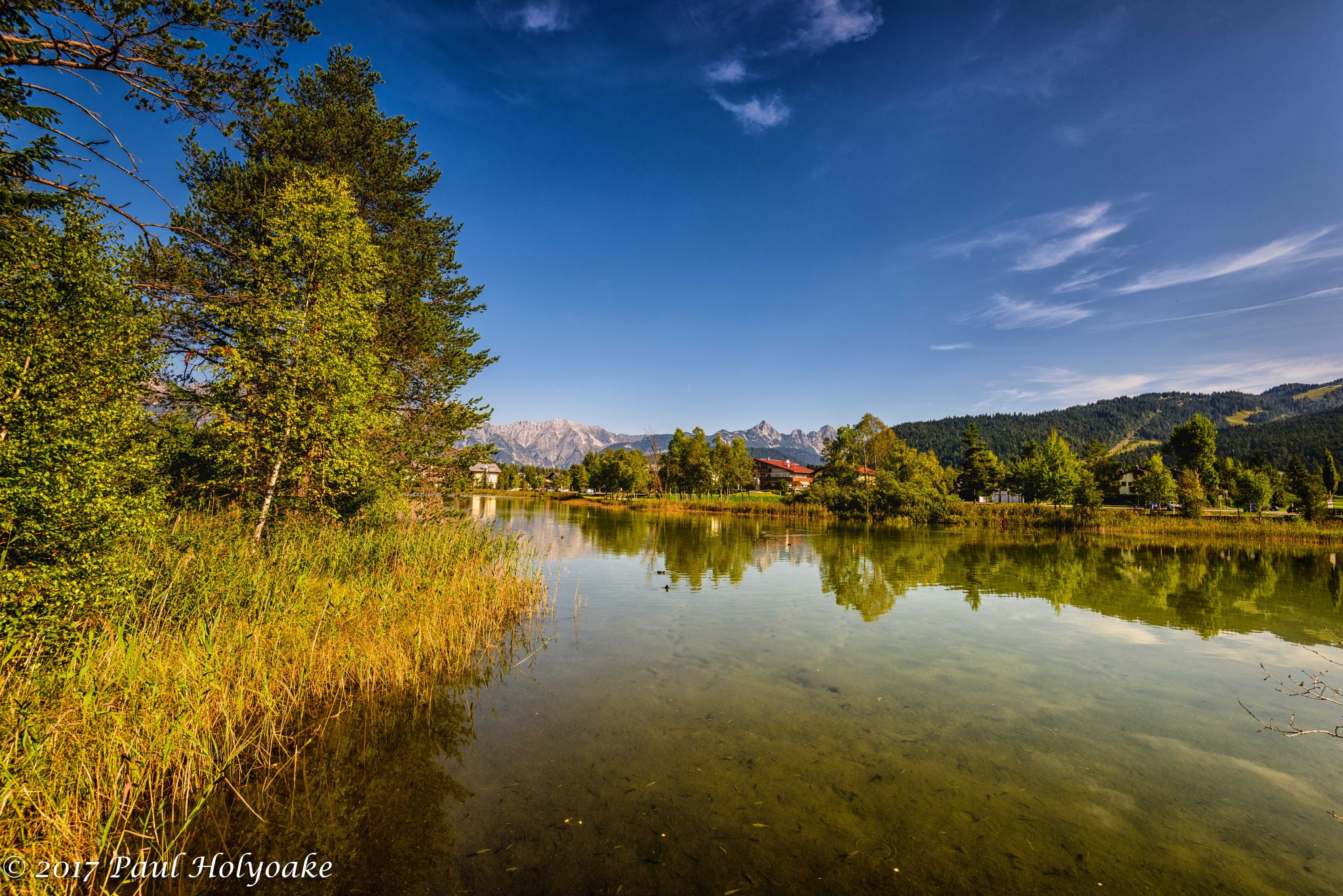 Wildsee by Photon