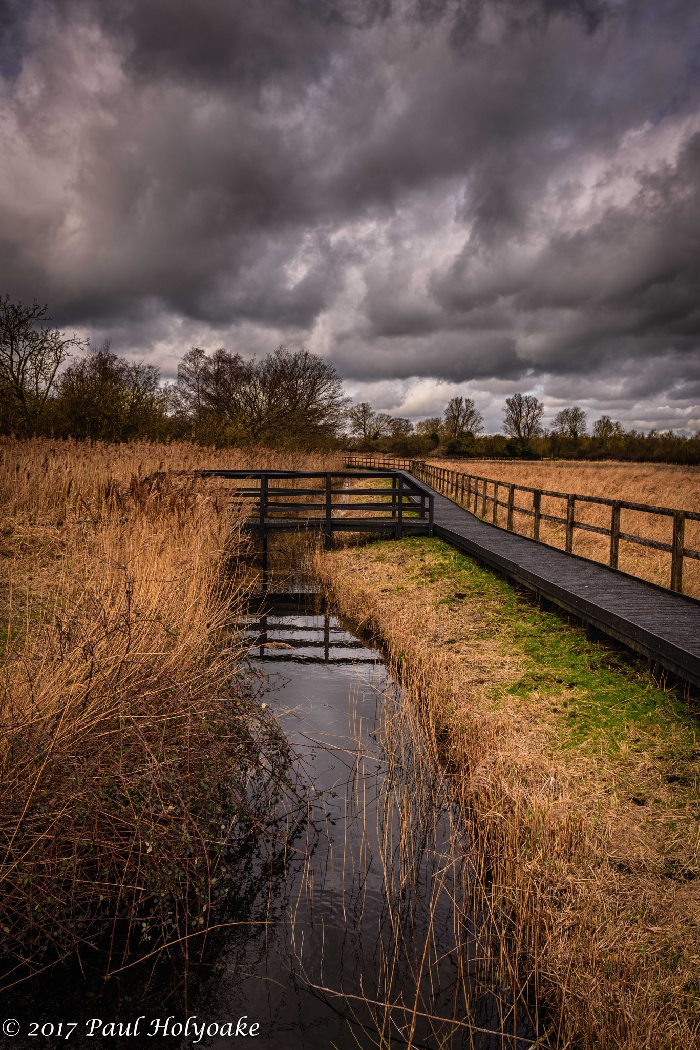 Fen Bridge by Photon