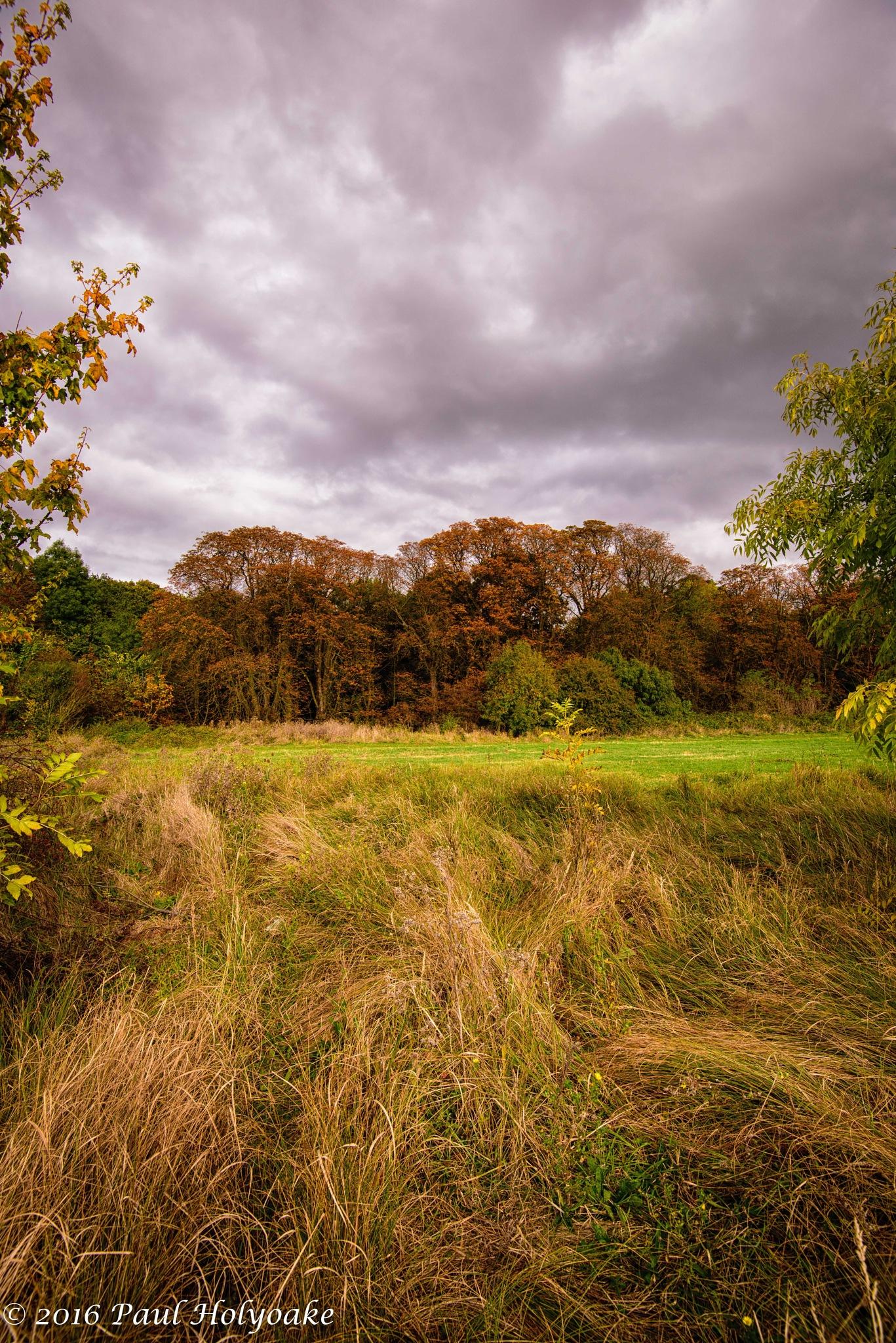 Autumn Colours by Photon