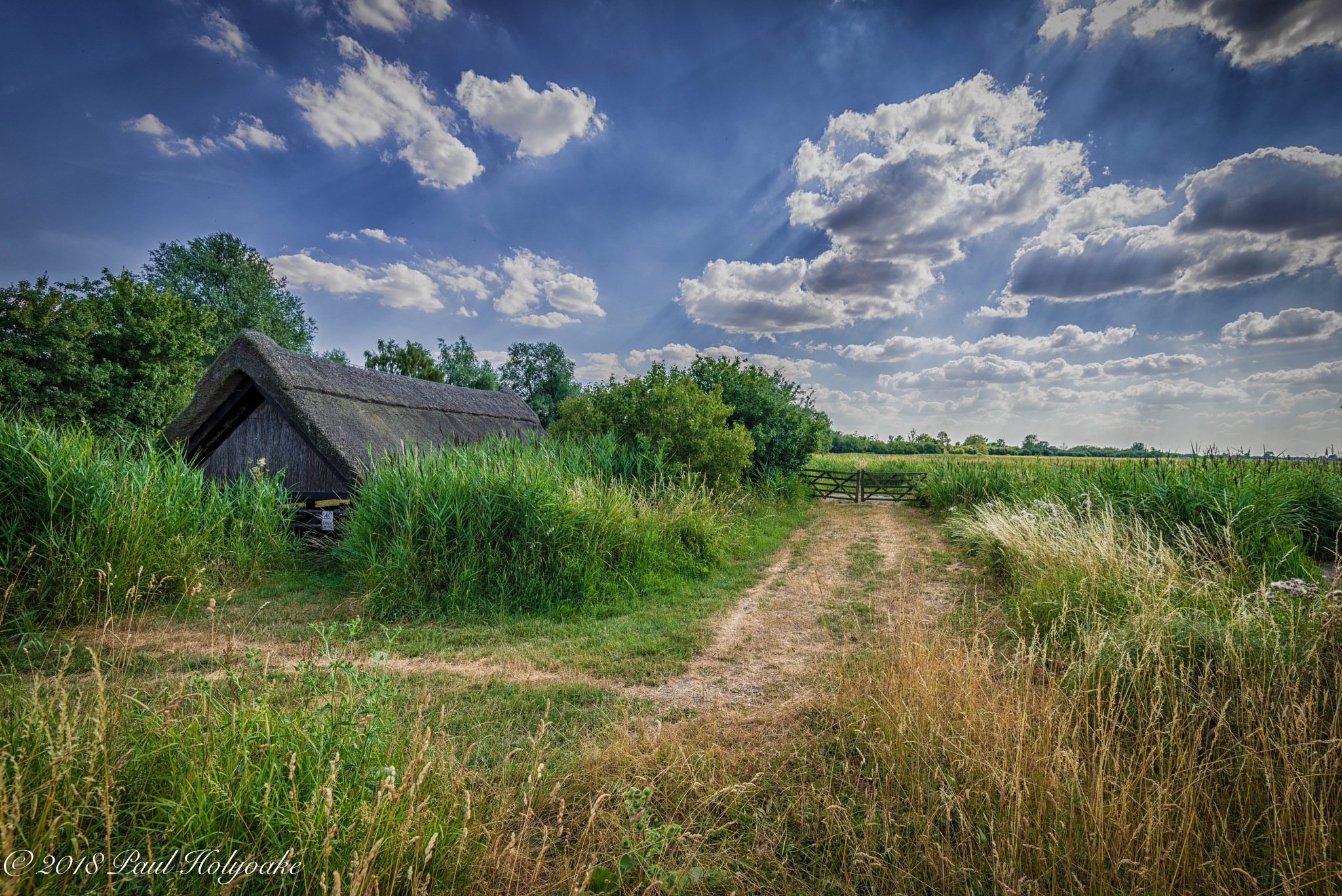 Wicken Fen by Photon