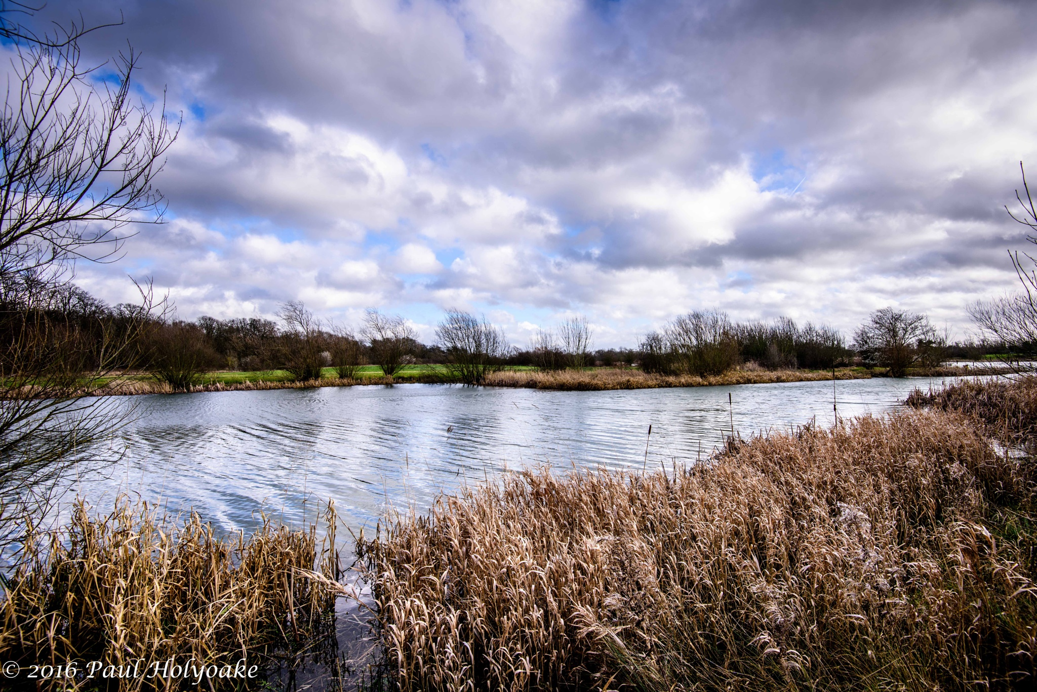 Bright Winters Day by Photon