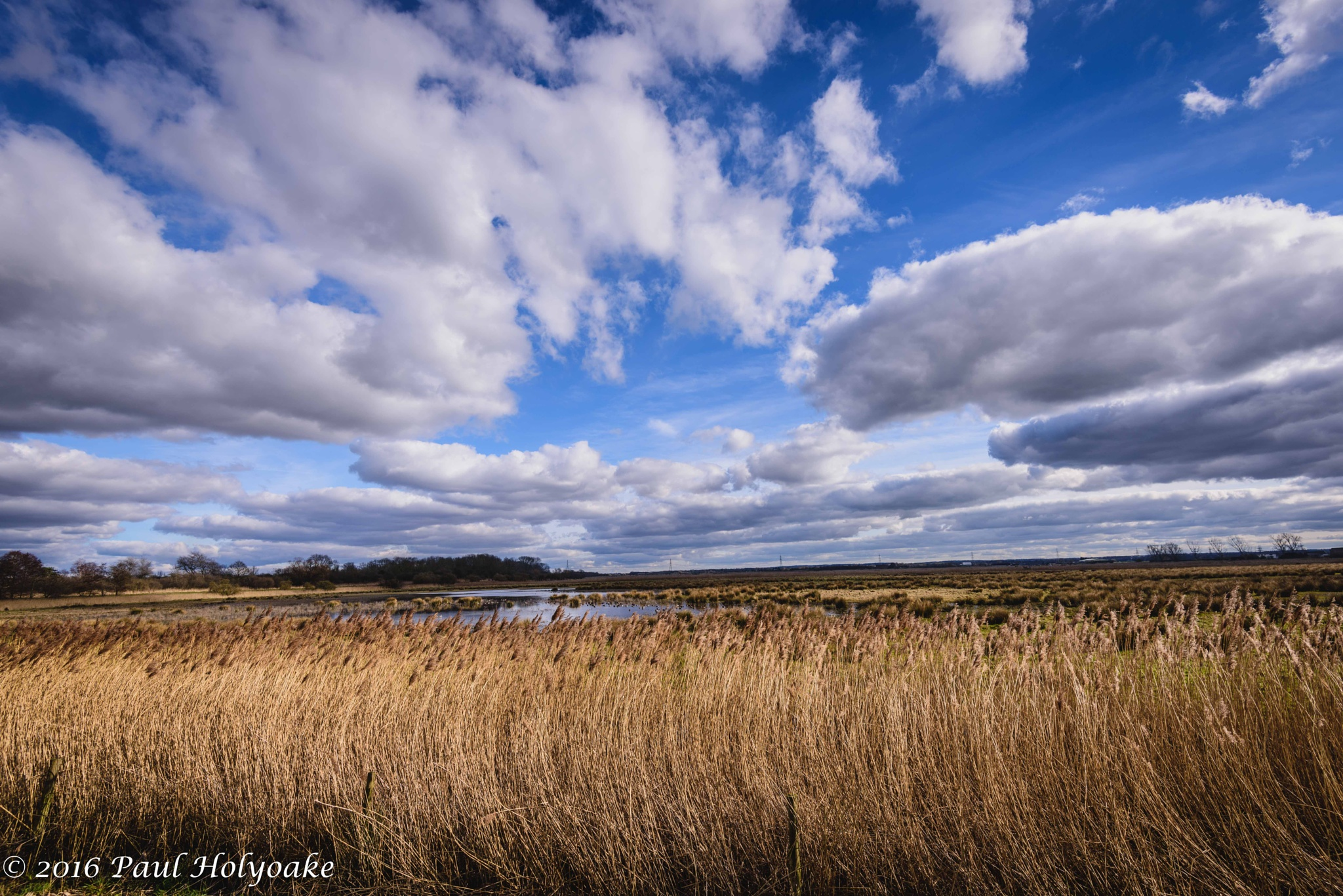 Bakers Fen by Photon