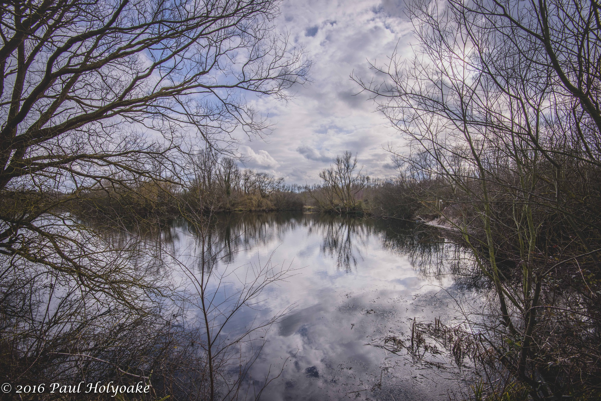 Photo in Landscape #lake #trees #reflection #clouds