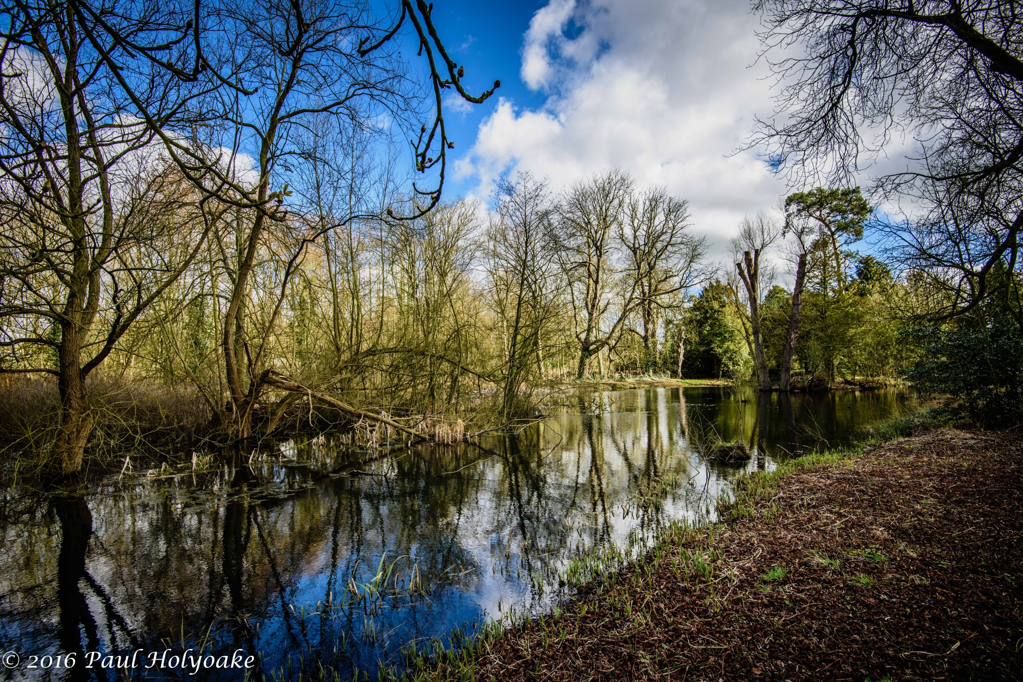Photo in Landscape #brook #reflection #trees #clouds