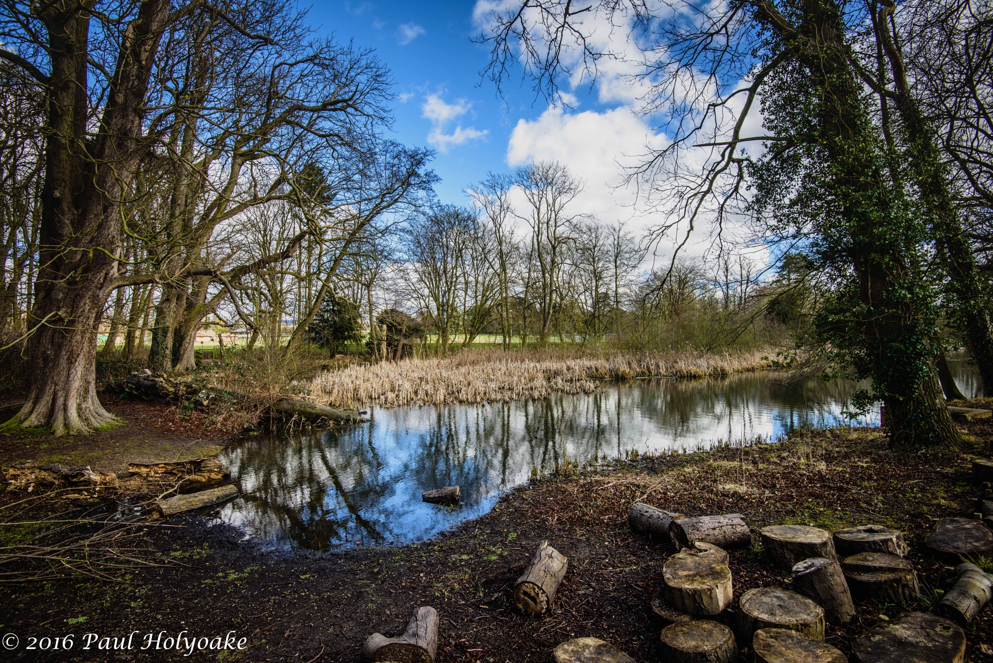 Photo in Landscape #brook #trees #clouds