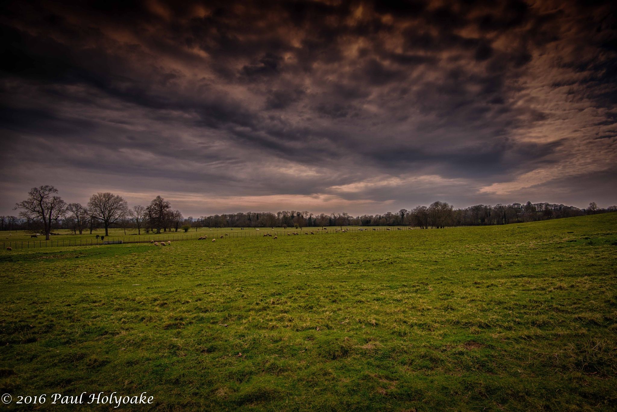 Dark Sky by Photon