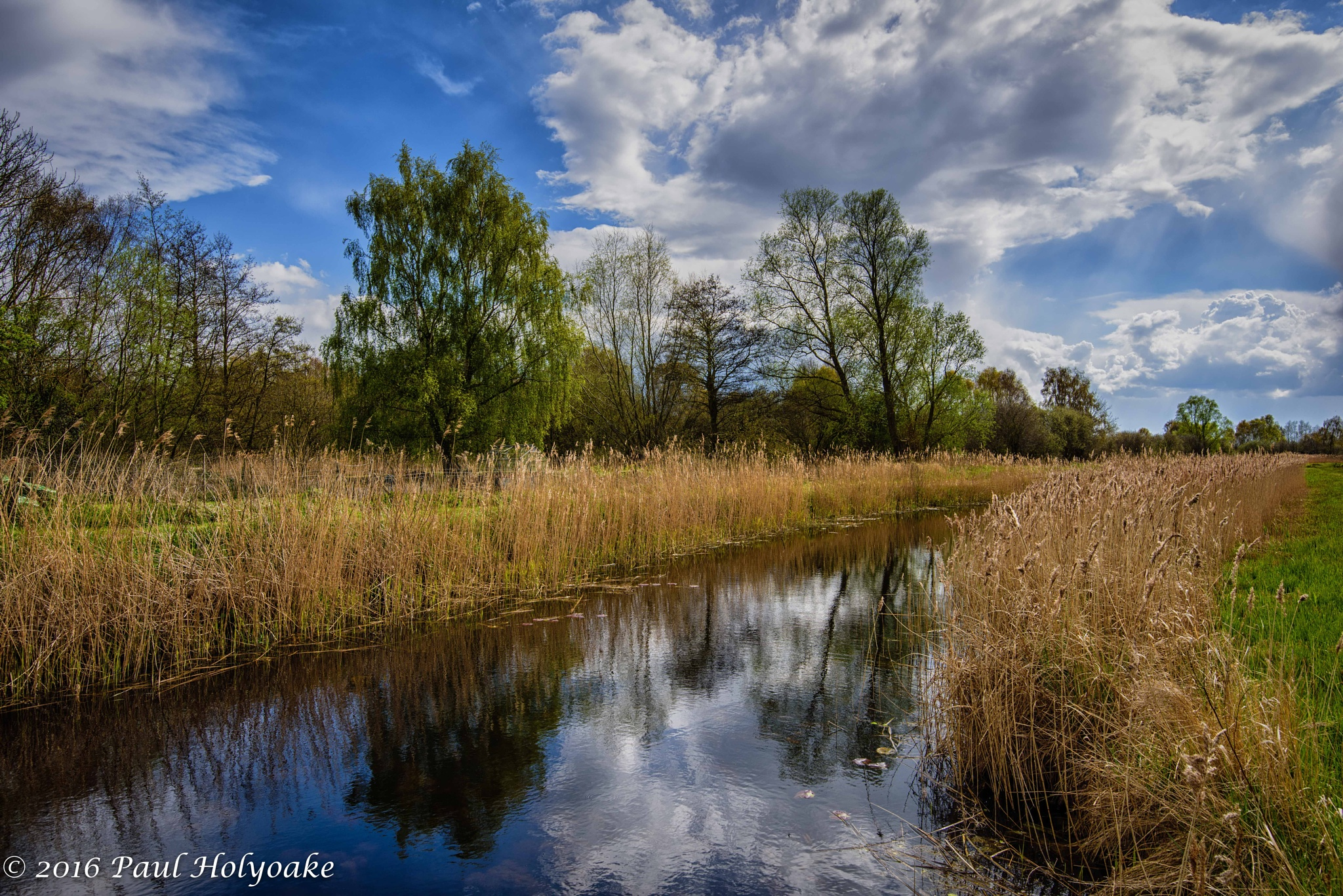 Photo in Landscape #lode #trees #clouds