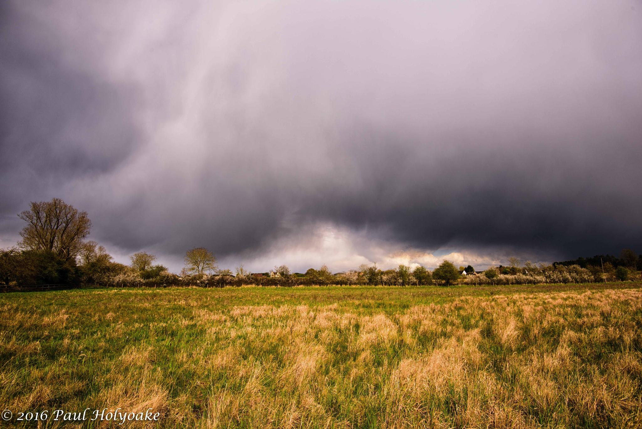 Photo in Landscape #cloud #field #trees